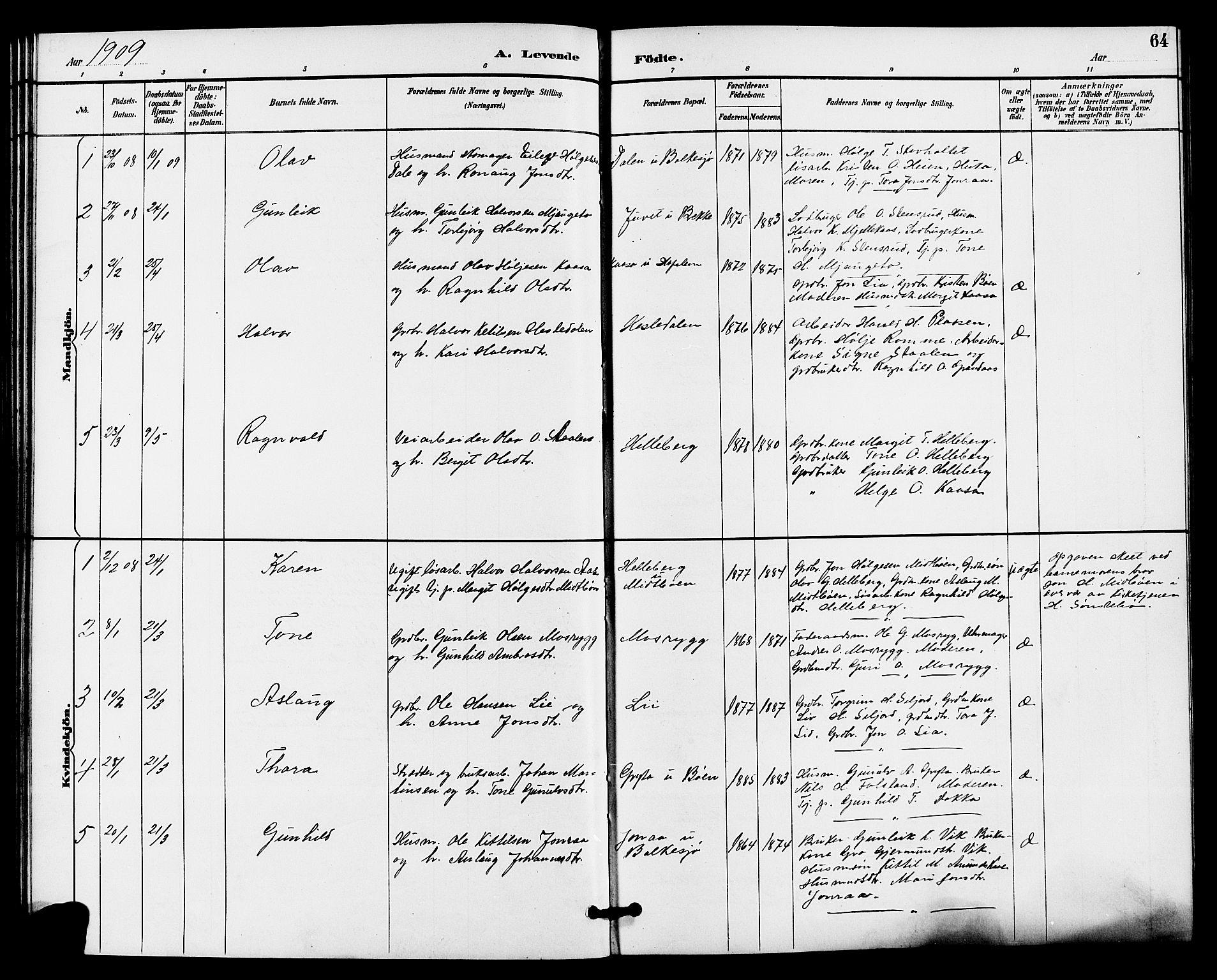 SAKO, Gransherad kirkebøker, G/Ga/L0003: Klokkerbok nr. I 3, 1887-1915, s. 64