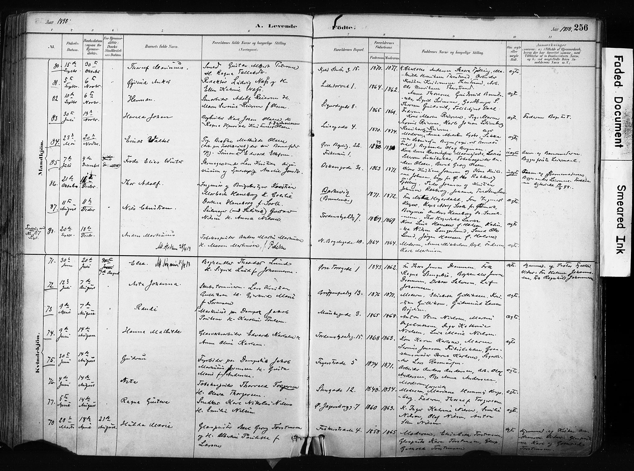 SAKO, Larvik kirkebøker, F/Fa/L0009: Ministerialbok nr. I 9, 1884-1904, s. 256