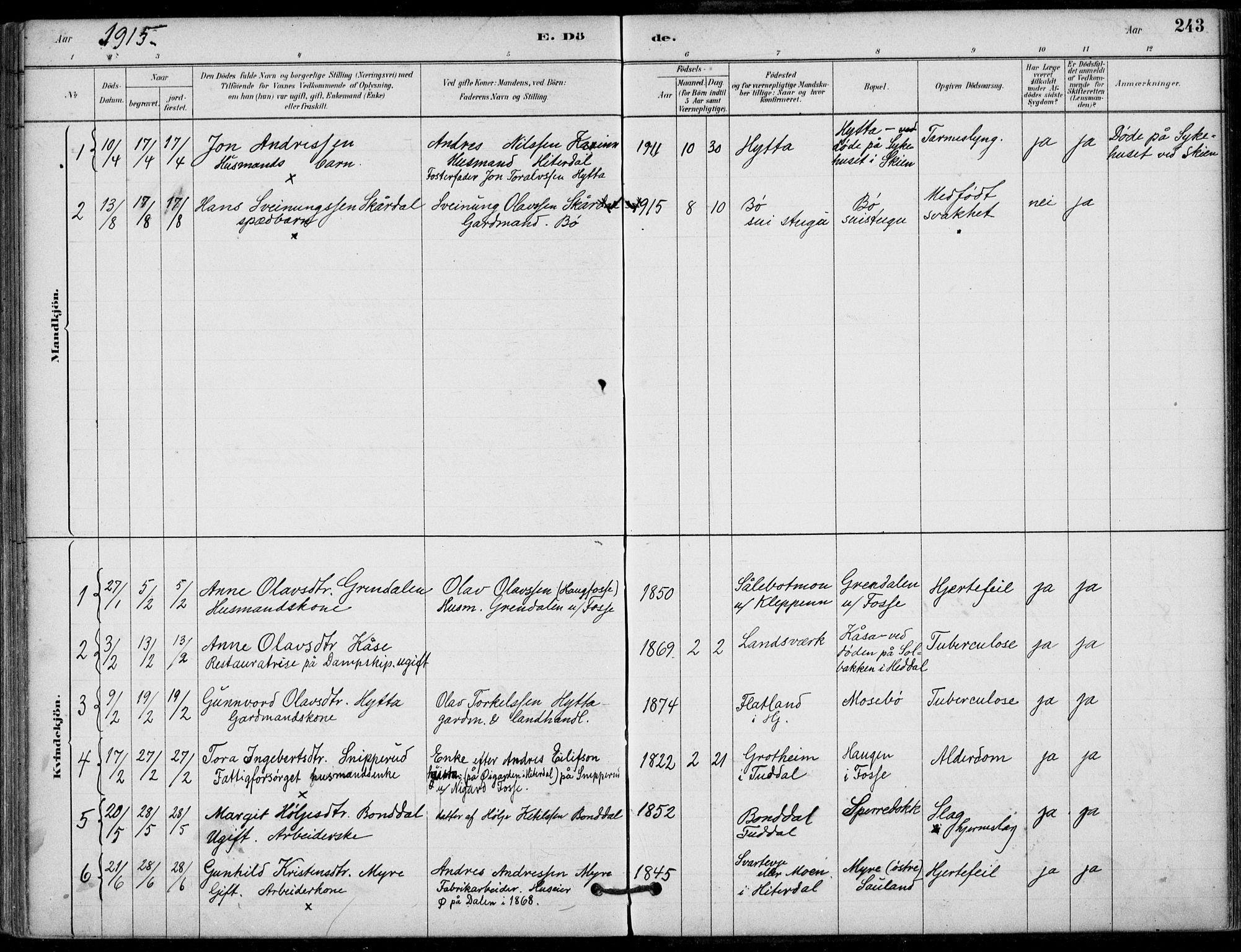 SAKO, Hjartdal kirkebøker, F/Fb/L0002: Ministerialbok nr. II 2, 1880-1932, s. 243