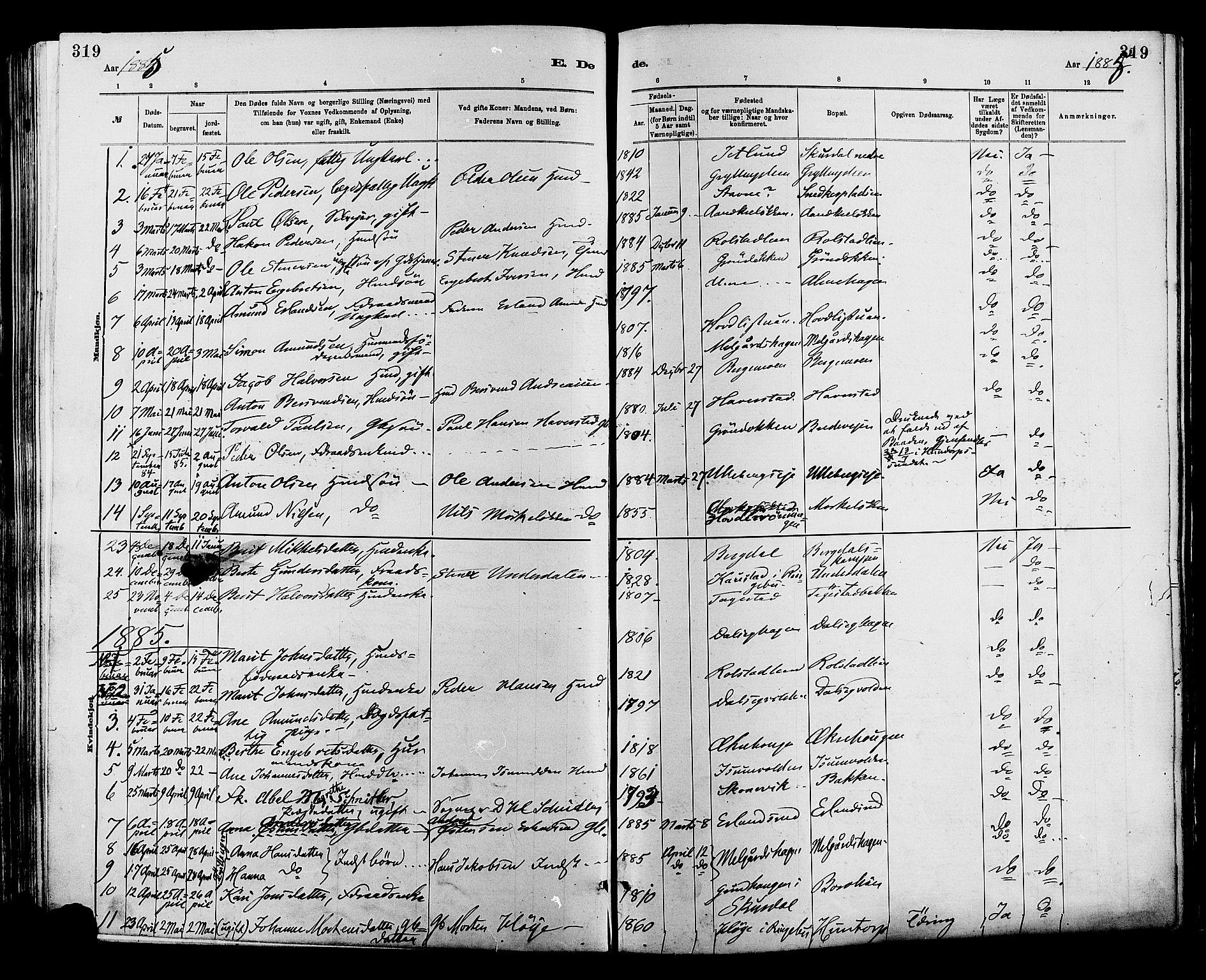 SAH, Sør-Fron prestekontor, H/Ha/Haa/L0003: Ministerialbok nr. 3, 1881-1897, s. 319