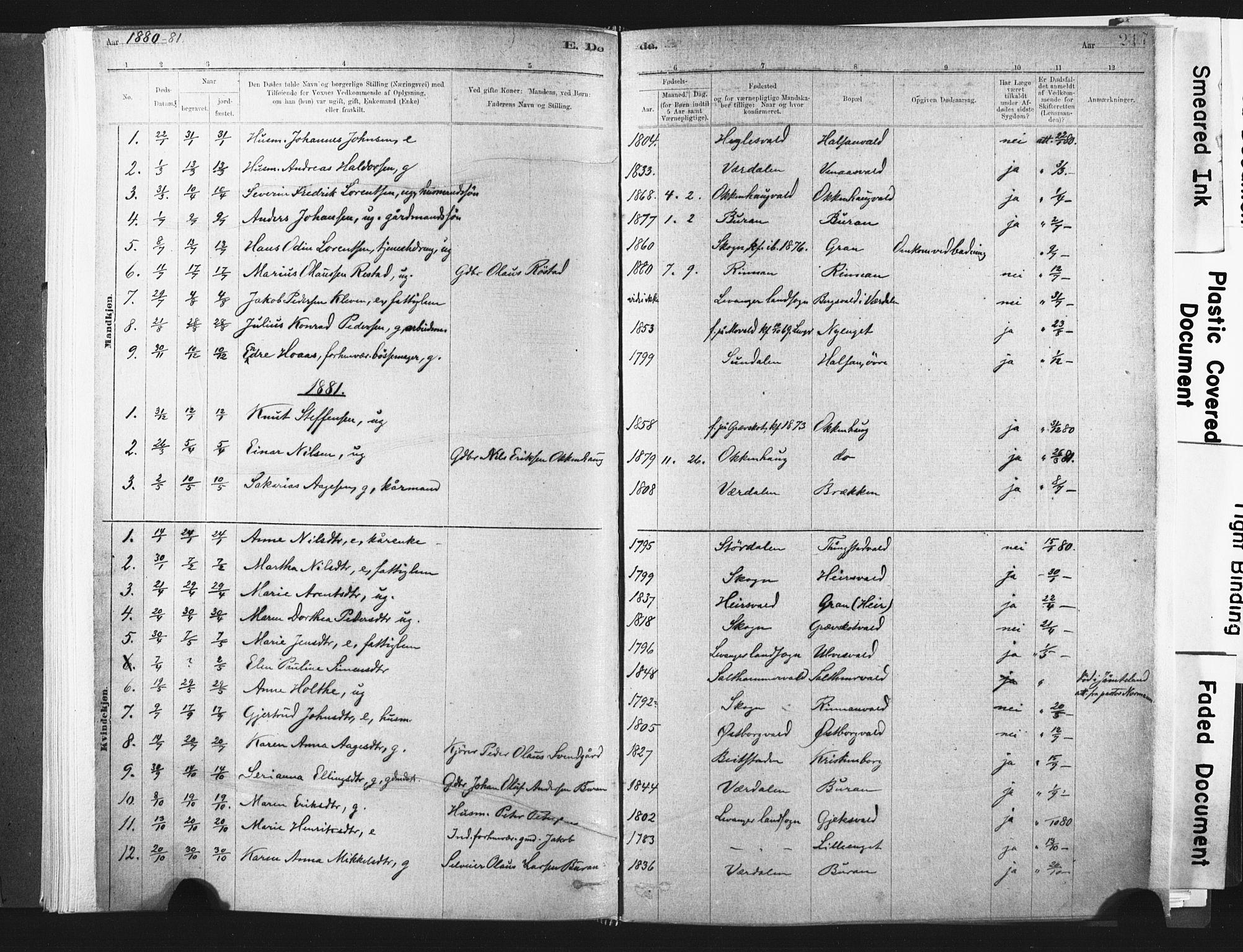 SAT, Ministerialprotokoller, klokkerbøker og fødselsregistre - Nord-Trøndelag, 721/L0207: Ministerialbok nr. 721A02, 1880-1911, s. 217