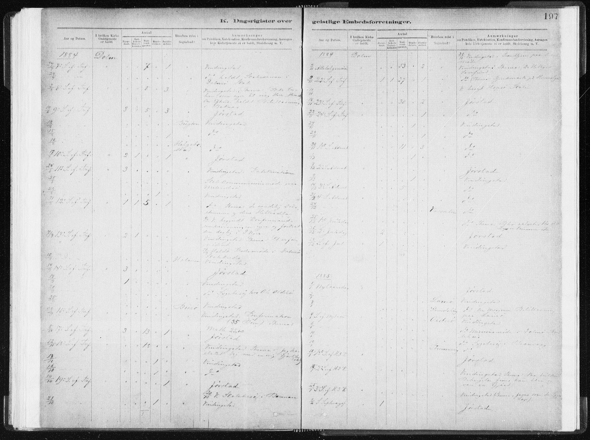 SAT, Ministerialprotokoller, klokkerbøker og fødselsregistre - Sør-Trøndelag, 634/L0533: Ministerialbok nr. 634A09, 1882-1901, s. 197
