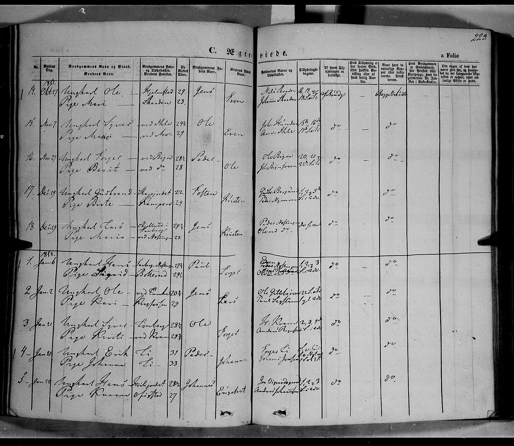 SAH, Øyer prestekontor, Ministerialbok nr. 5, 1842-1857, s. 223