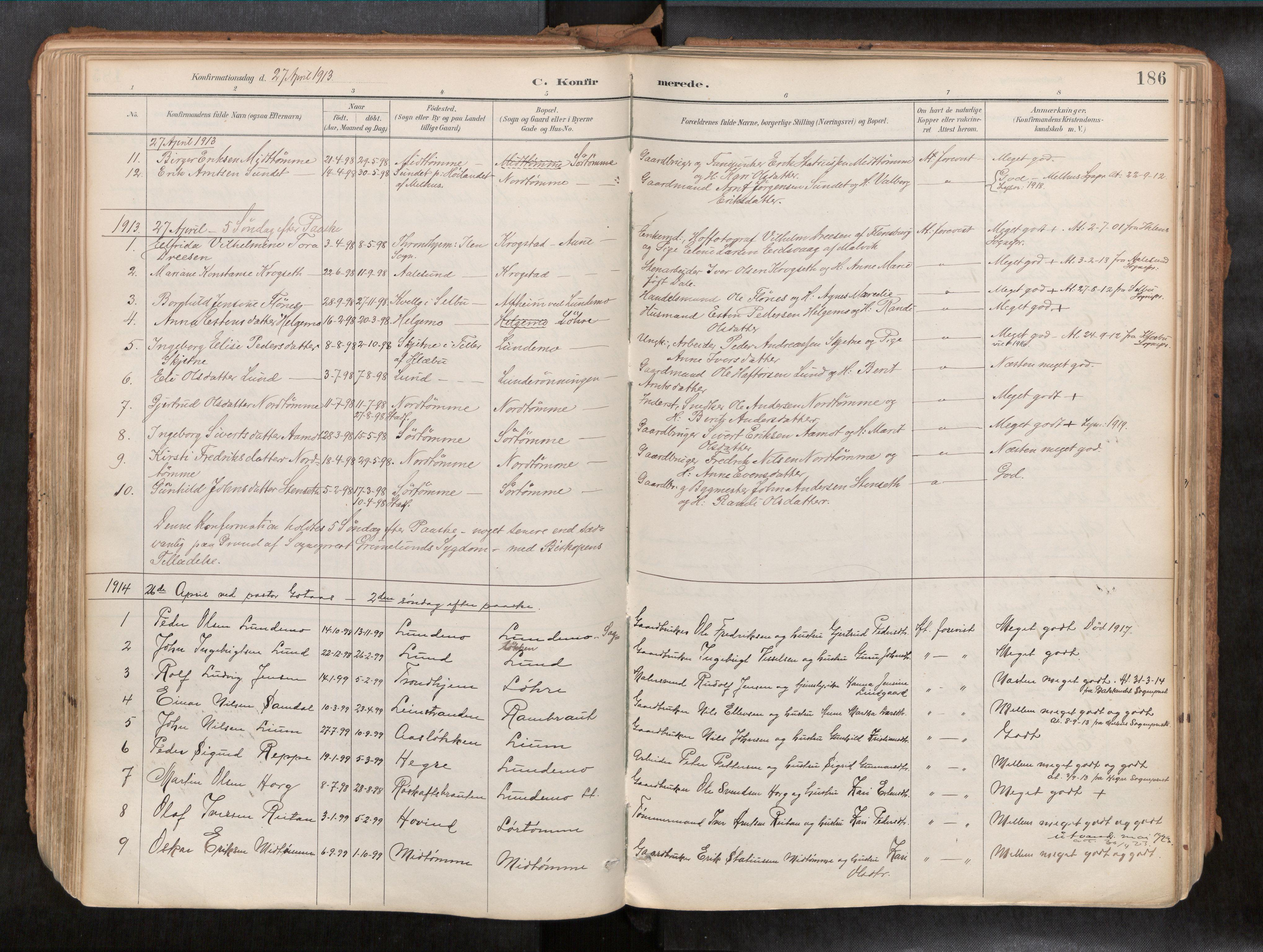 SAT, Ministerialprotokoller, klokkerbøker og fødselsregistre - Sør-Trøndelag, 692/L1105b: Ministerialbok nr. 692A06, 1891-1934, s. 186
