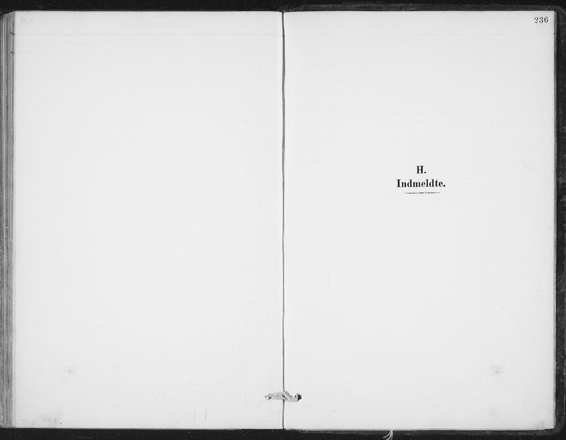 SAT, Ministerialprotokoller, klokkerbøker og fødselsregistre - Nord-Trøndelag, 786/L0687: Ministerialbok nr. 786A03, 1888-1898, s. 236