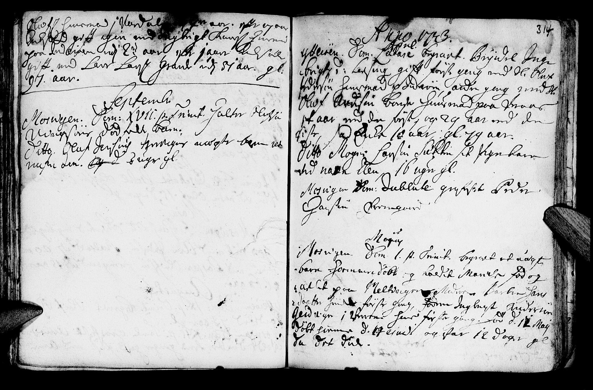 SAT, Ministerialprotokoller, klokkerbøker og fødselsregistre - Nord-Trøndelag, 722/L0215: Ministerialbok nr. 722A02, 1718-1755, s. 314