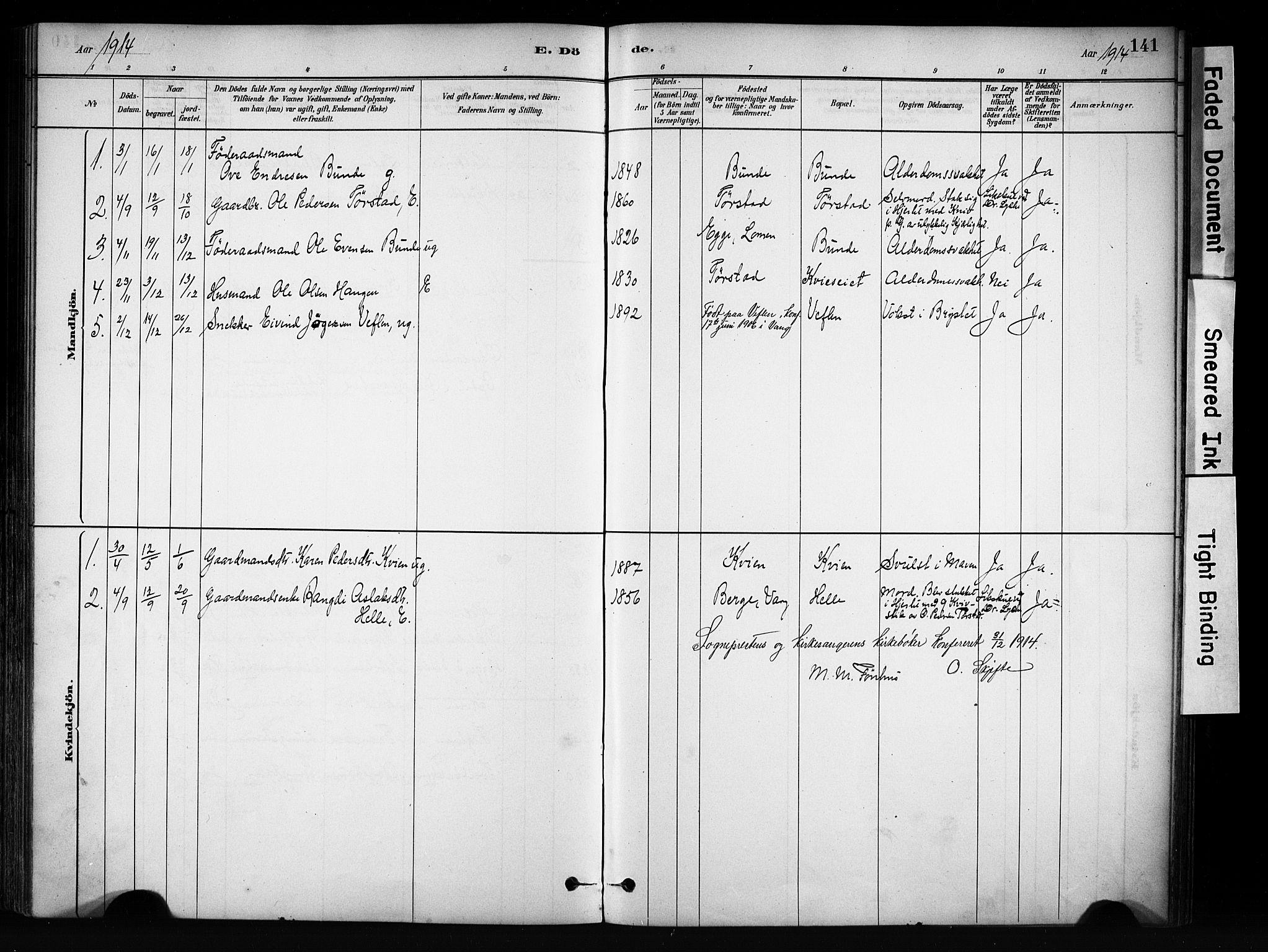 SAH, Vang prestekontor, Valdres, Ministerialbok nr. 9, 1882-1914, s. 141