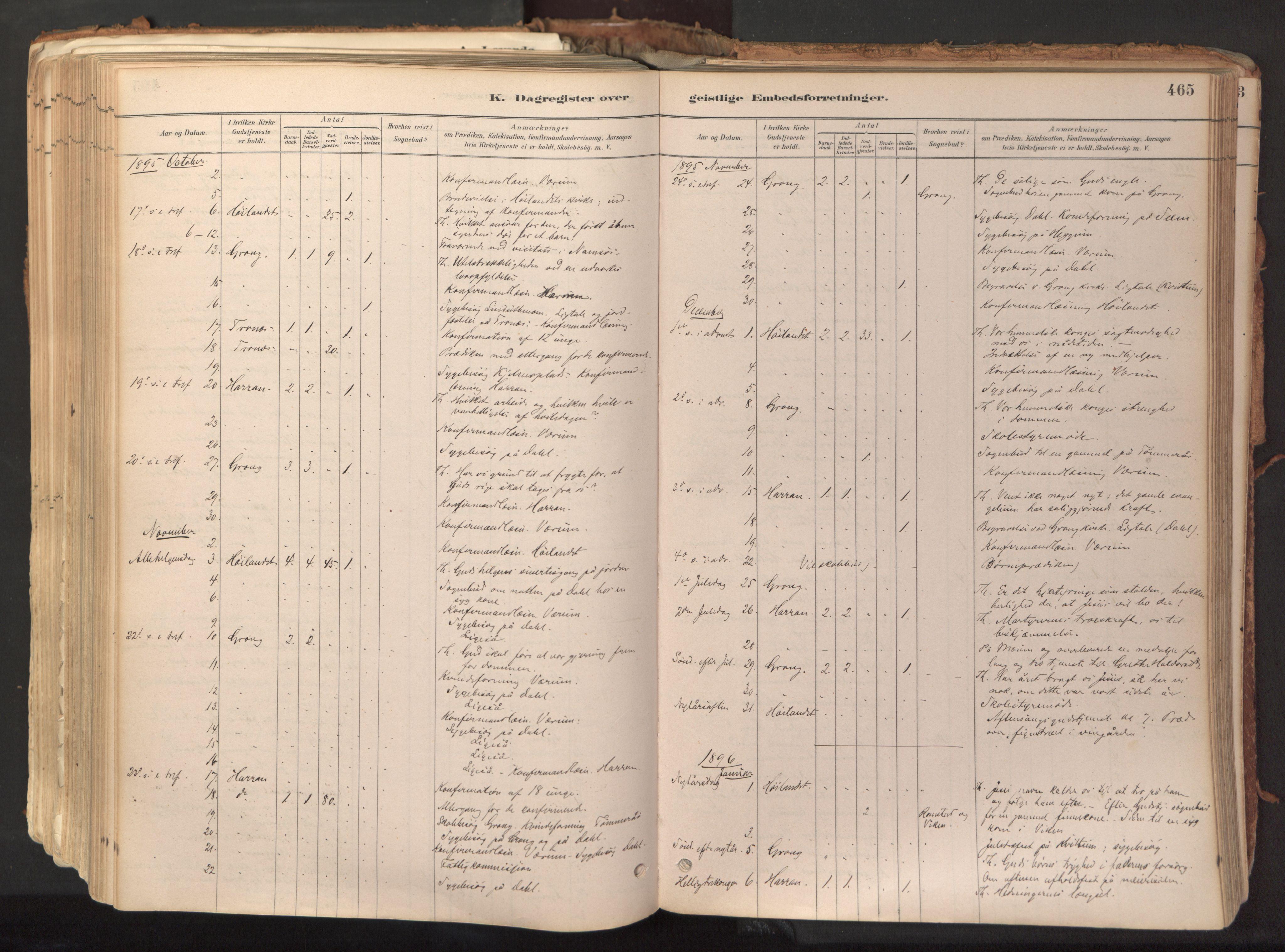 SAT, Ministerialprotokoller, klokkerbøker og fødselsregistre - Nord-Trøndelag, 758/L0519: Ministerialbok nr. 758A04, 1880-1926, s. 465