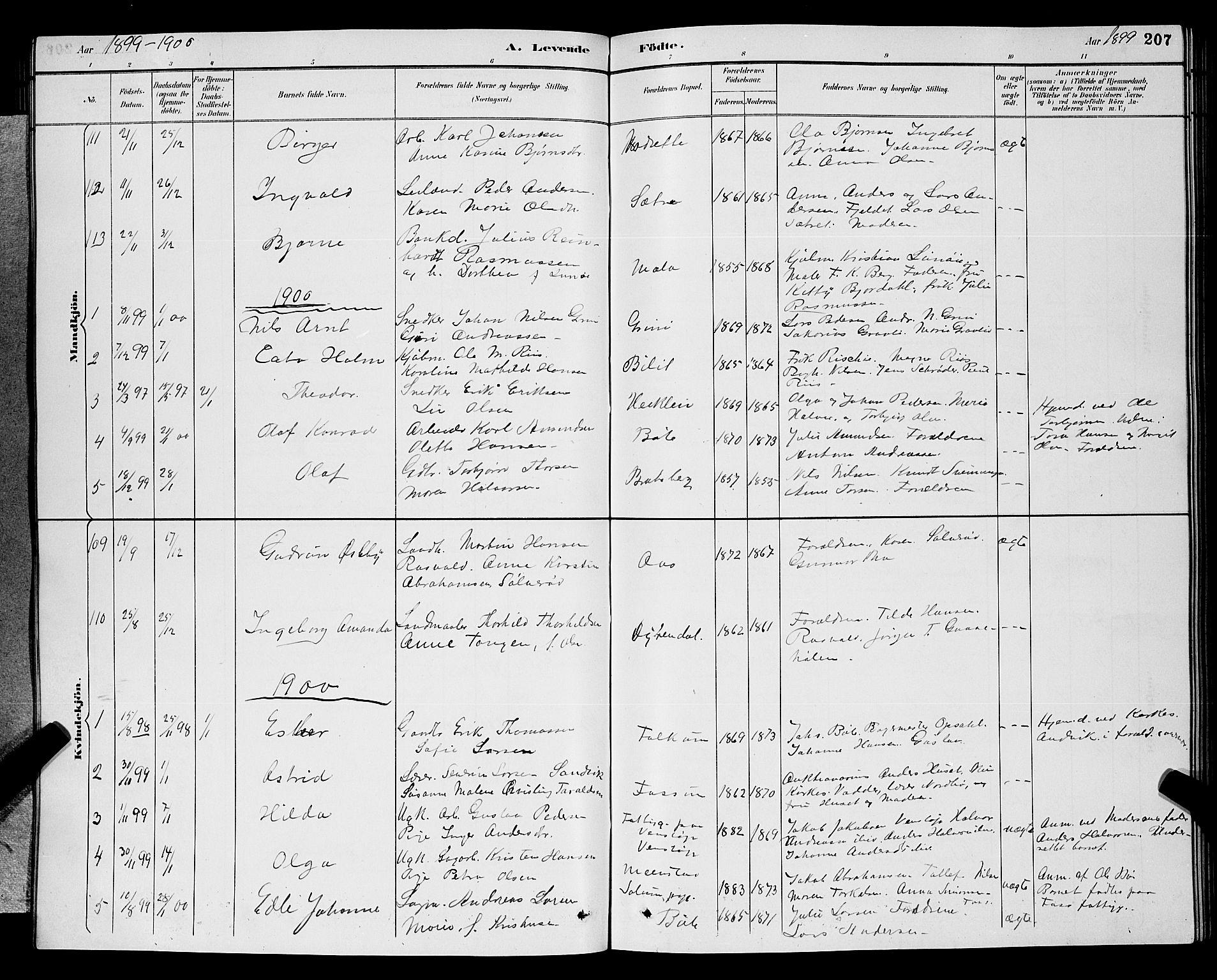 SAKO, Gjerpen kirkebøker, G/Ga/L0002: Klokkerbok nr. I 2, 1883-1900, s. 207