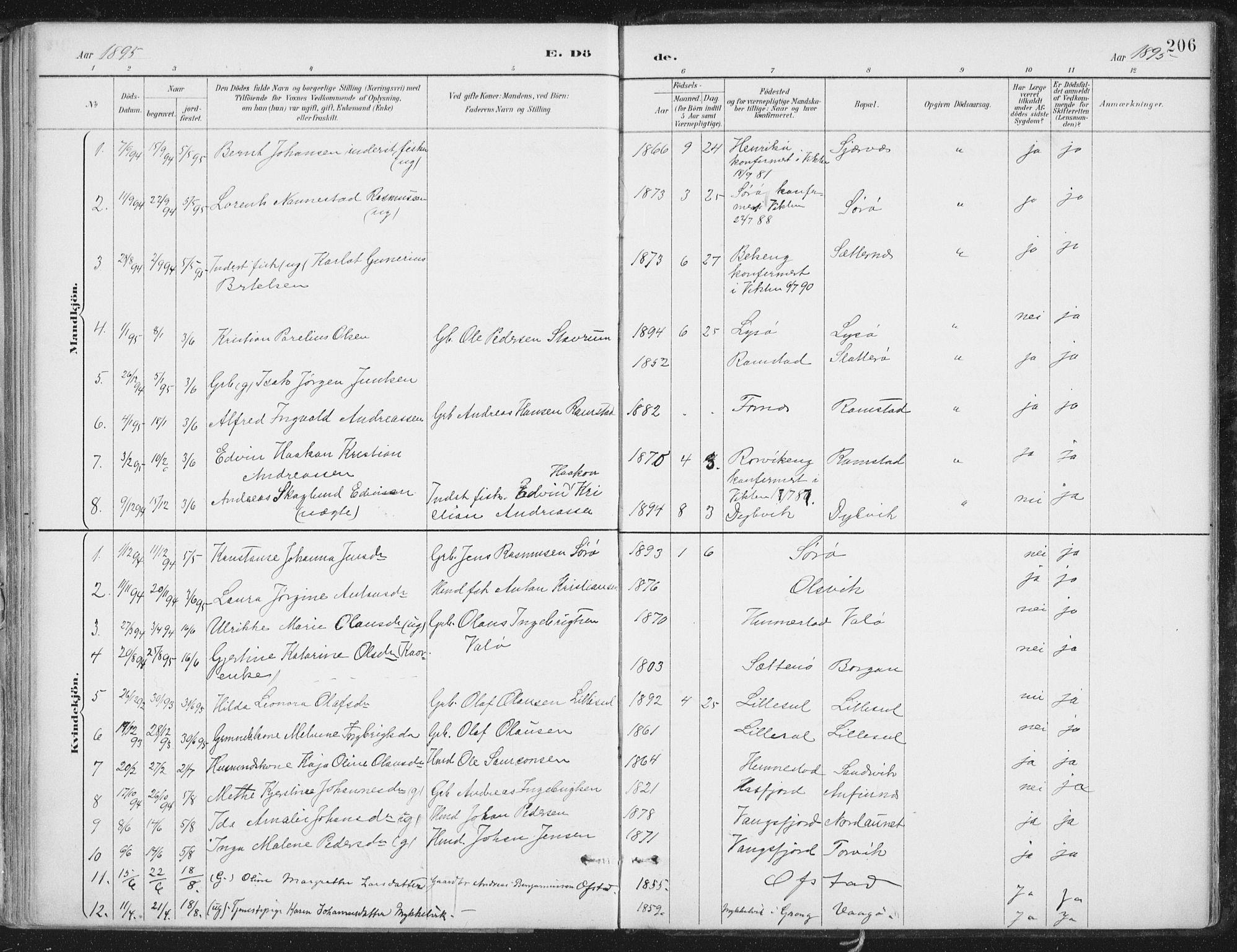 SAT, Ministerialprotokoller, klokkerbøker og fødselsregistre - Nord-Trøndelag, 786/L0687: Ministerialbok nr. 786A03, 1888-1898, s. 206