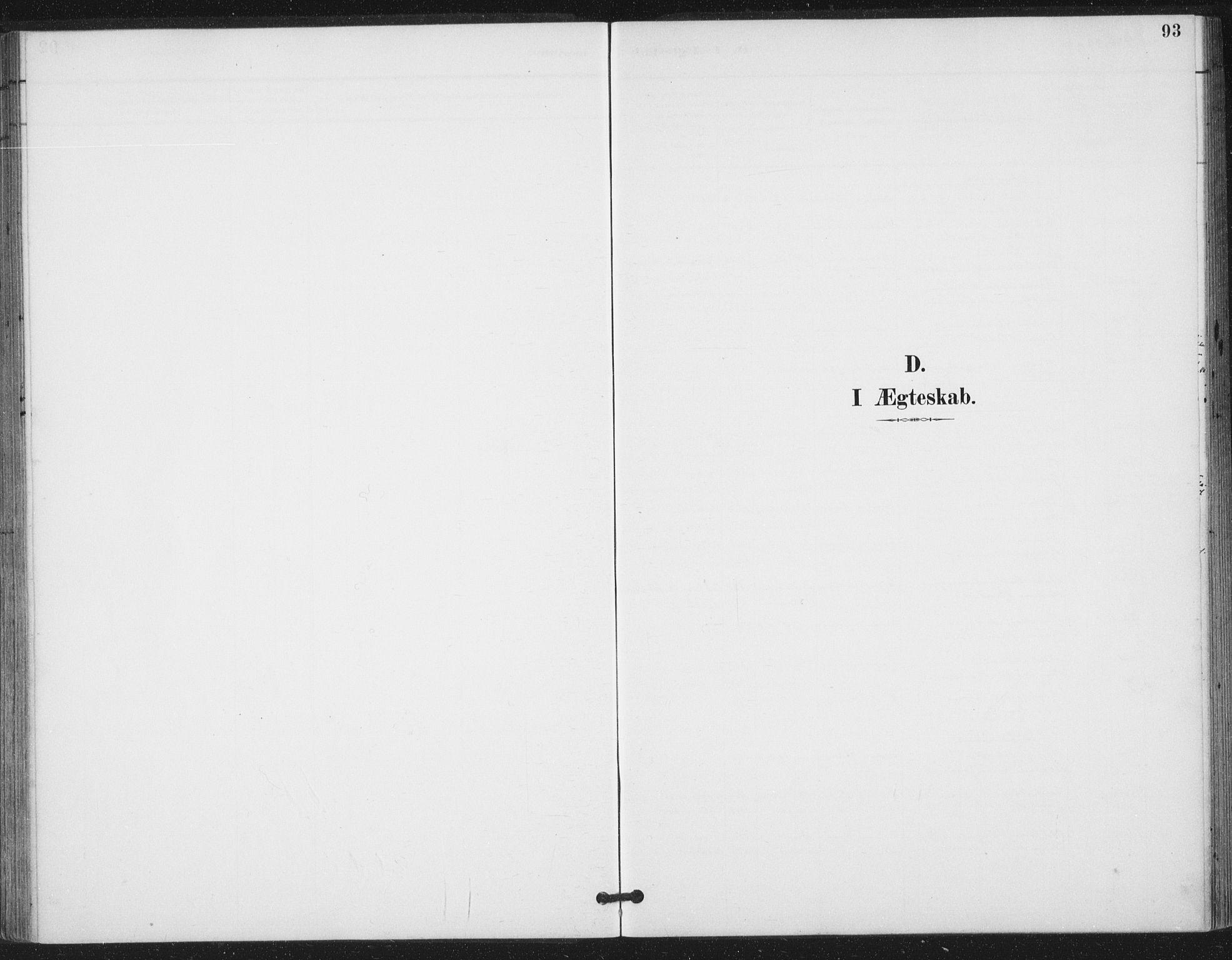 SAT, Ministerialprotokoller, klokkerbøker og fødselsregistre - Nord-Trøndelag, 783/L0660: Ministerialbok nr. 783A02, 1886-1918, s. 93