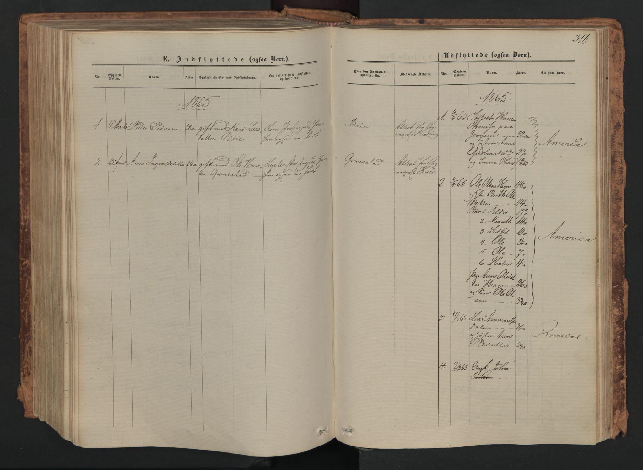 SAH, Skjåk prestekontor, Ministerialbok nr. 1, 1863-1879, s. 316