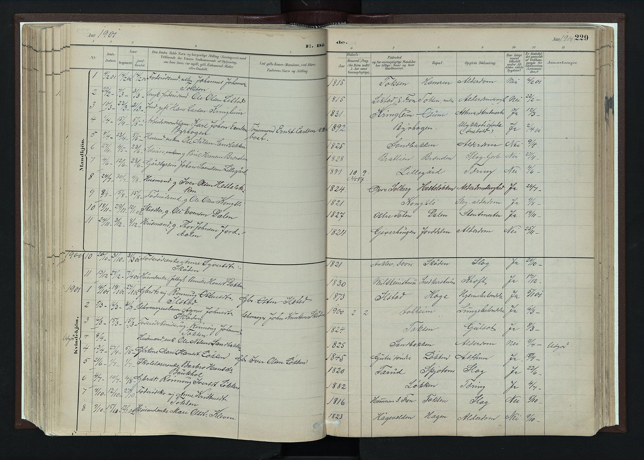 SAH, Nord-Fron prestekontor, Ministerialbok nr. 4, 1884-1914, s. 229