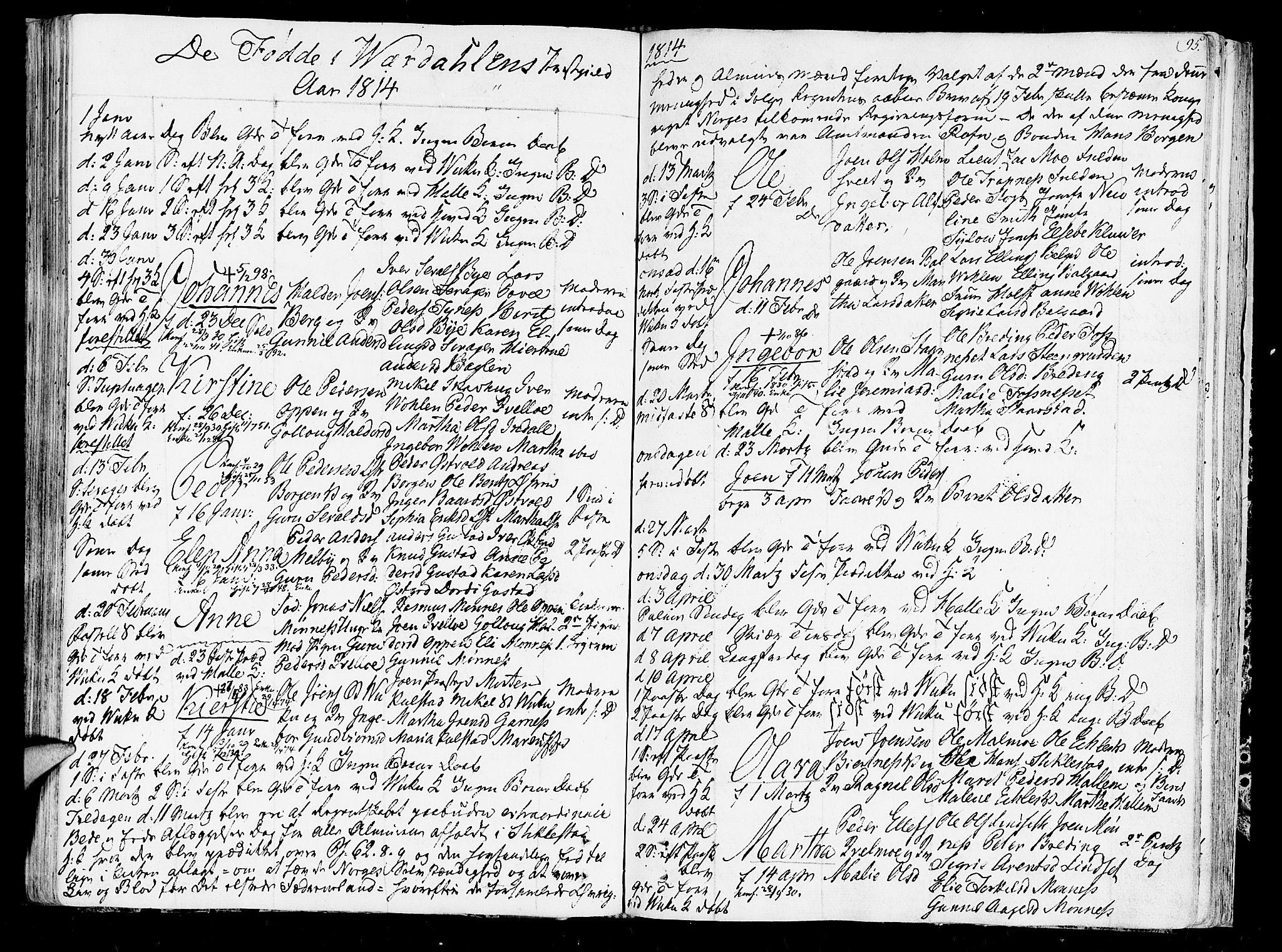 SAT, Ministerialprotokoller, klokkerbøker og fødselsregistre - Nord-Trøndelag, 723/L0233: Ministerialbok nr. 723A04, 1805-1816, s. 95