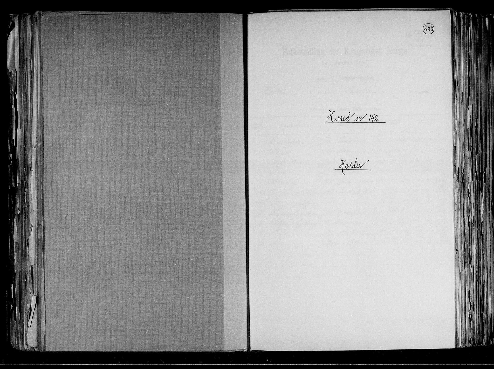 RA, Folketelling 1891 for 0819 Holla herred, 1891, s. 1
