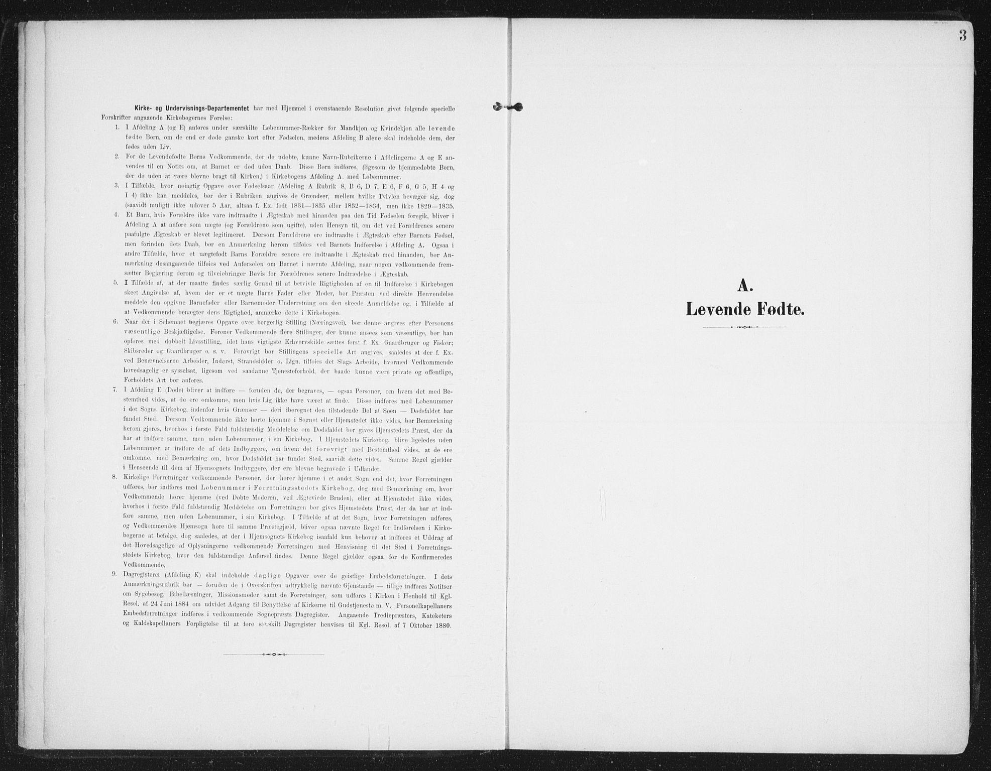 SAT, Ministerialprotokoller, klokkerbøker og fødselsregistre - Nordland, 892/L1321: Ministerialbok nr. 892A02, 1902-1918, s. 3