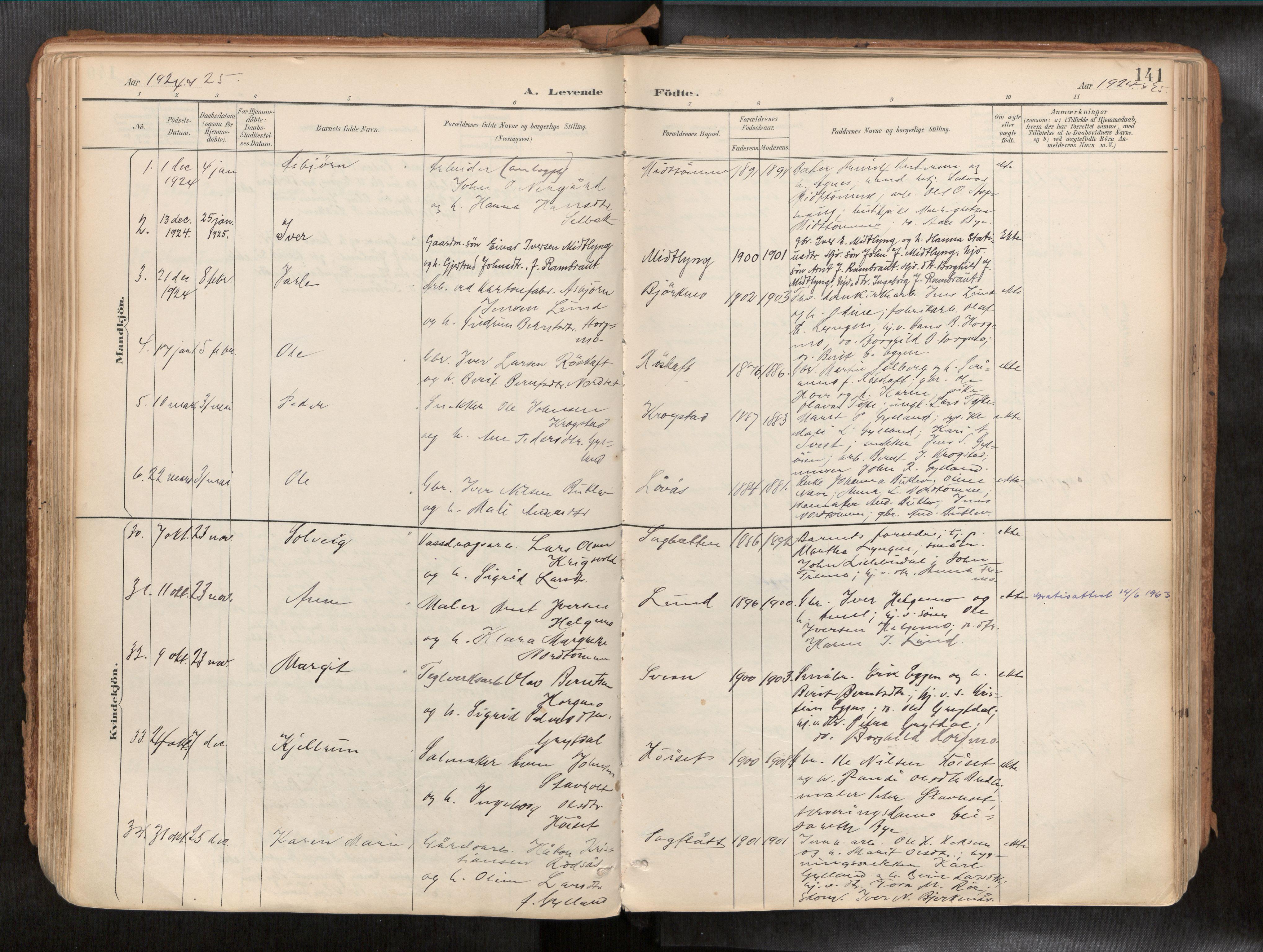 SAT, Ministerialprotokoller, klokkerbøker og fødselsregistre - Sør-Trøndelag, 692/L1105b: Ministerialbok nr. 692A06, 1891-1934, s. 141