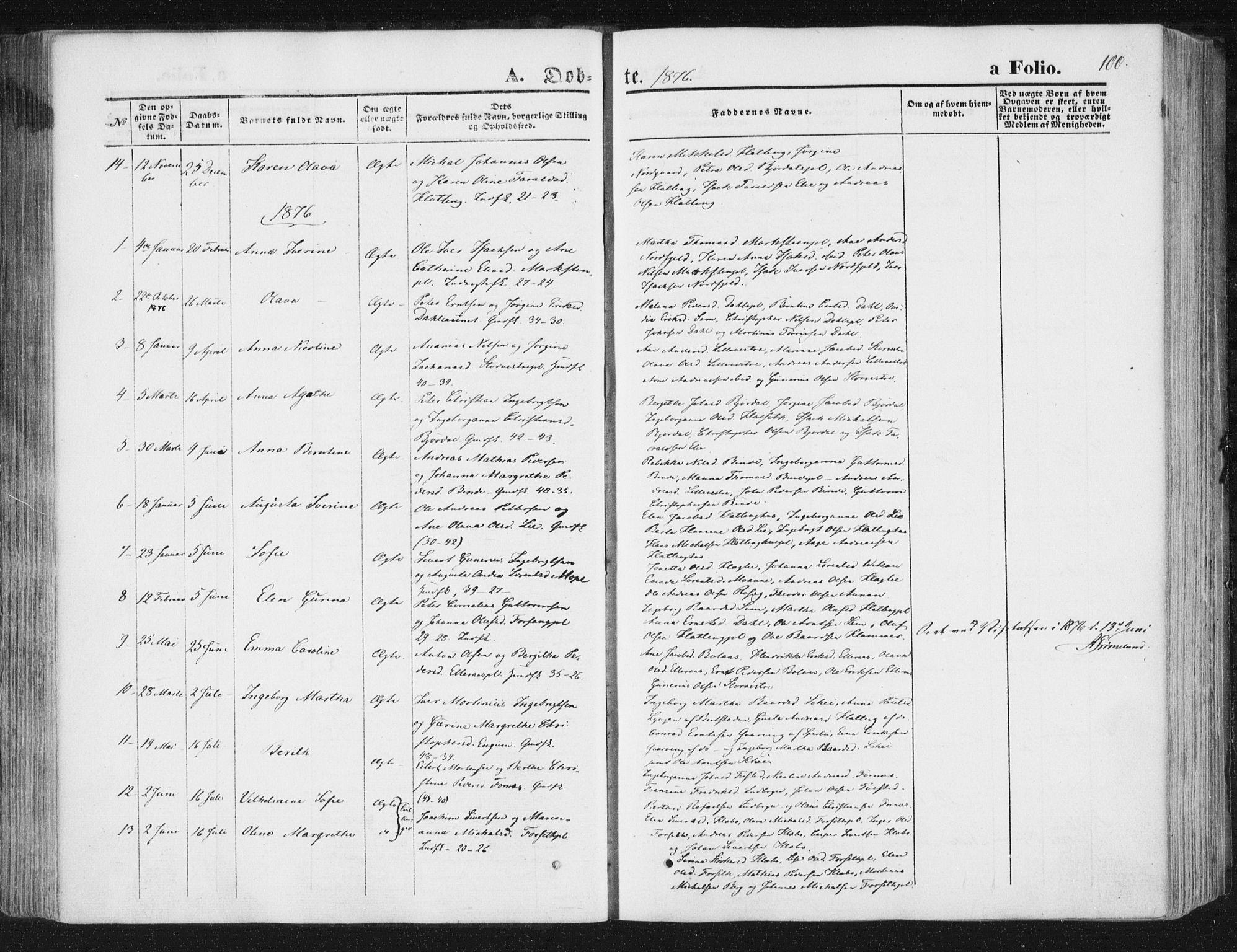 SAT, Ministerialprotokoller, klokkerbøker og fødselsregistre - Nord-Trøndelag, 746/L0447: Ministerialbok nr. 746A06, 1860-1877, s. 100