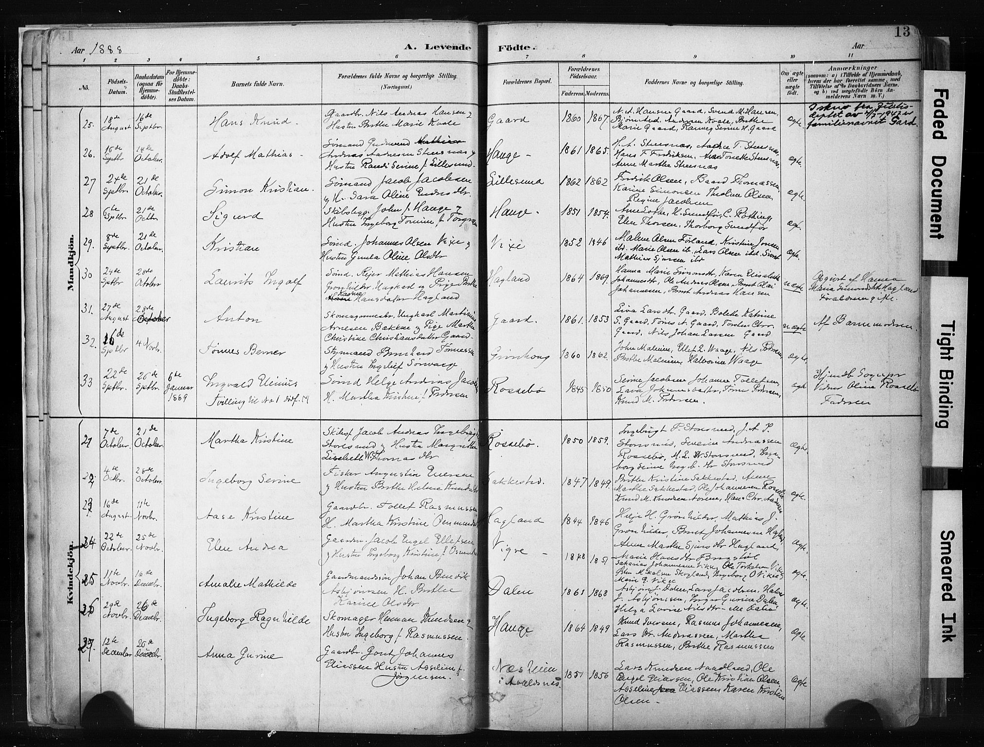 SAST, Haugesund sokneprestkontor, H/Ha/Haa/L0004: Ministerialbok nr. A 4, 1886-1908, s. 13