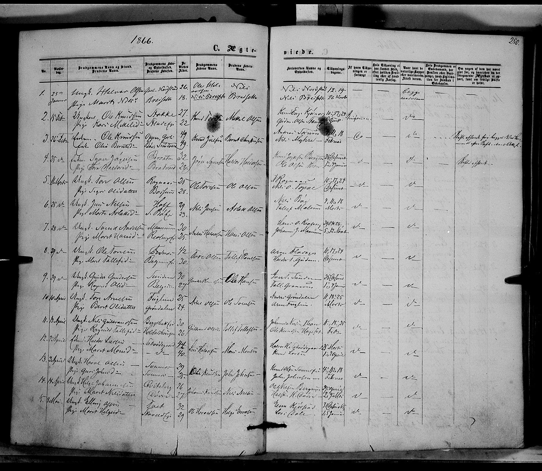 SAH, Nord-Aurdal prestekontor, Ministerialbok nr. 8, 1863-1875, s. 250