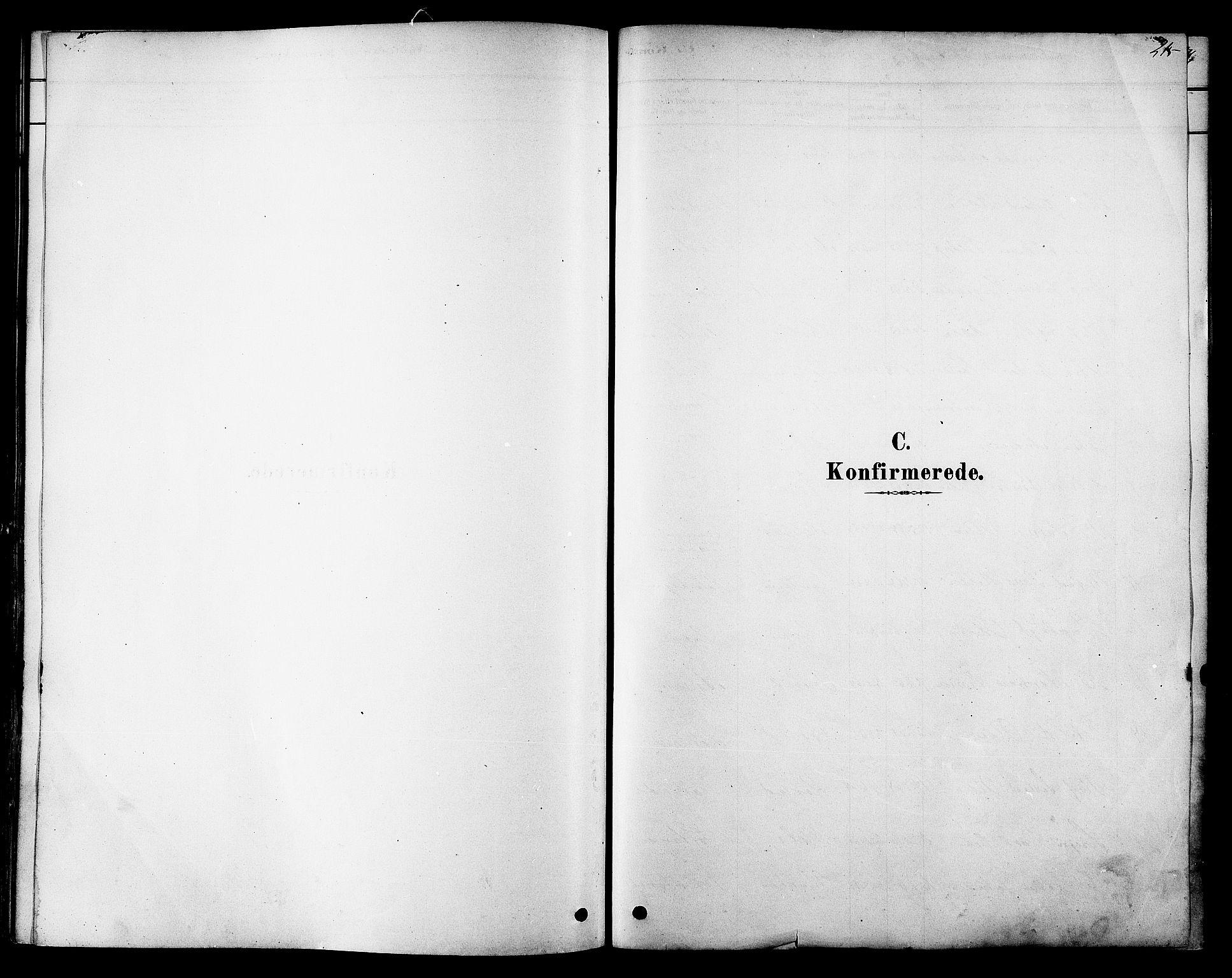 SAT, Ministerialprotokoller, klokkerbøker og fødselsregistre - Sør-Trøndelag, 606/L0294: Ministerialbok nr. 606A09, 1878-1886, s. 215