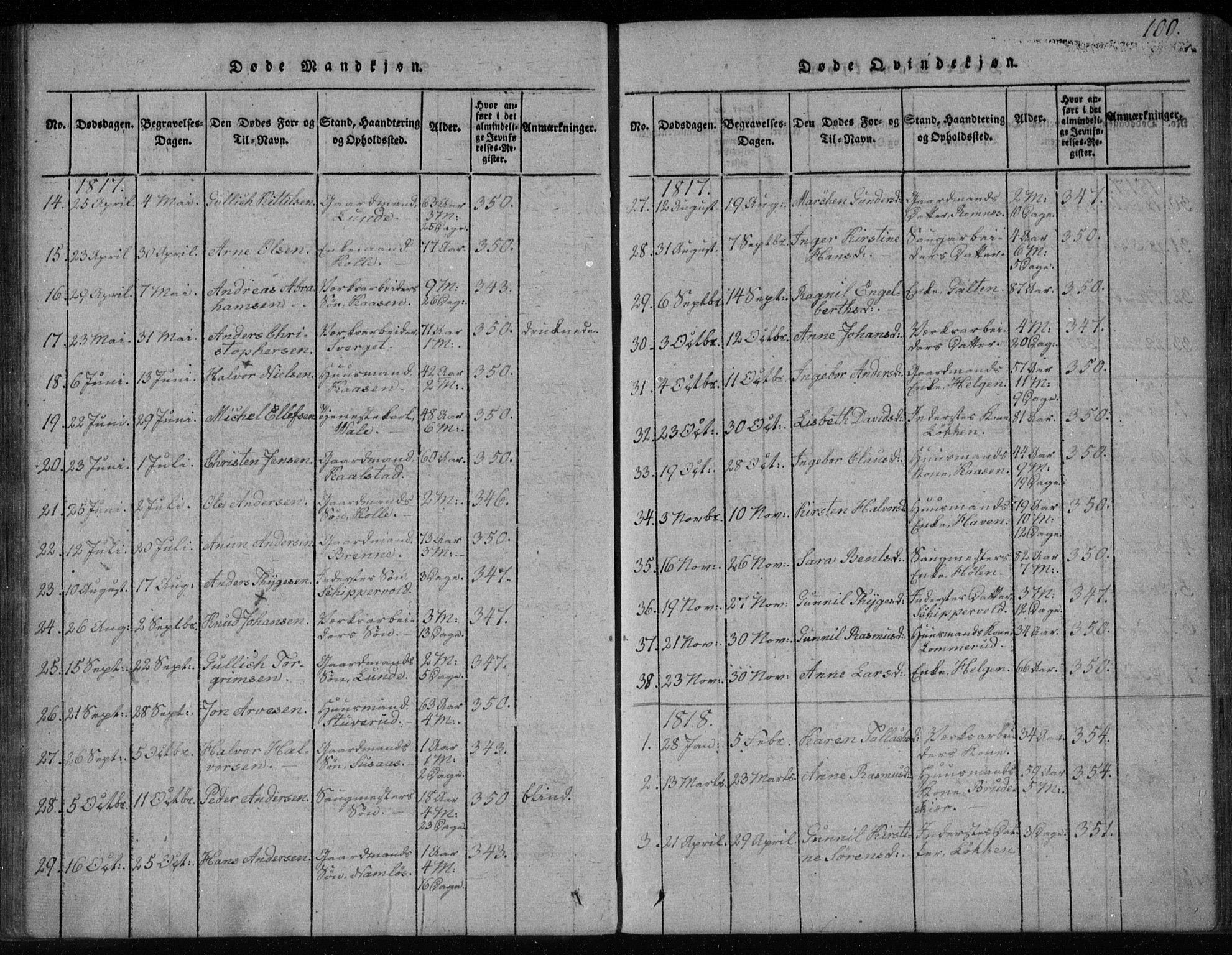 SAKO, Holla kirkebøker, F/Fa/L0003: Ministerialbok nr. 3, 1815-1830, s. 100