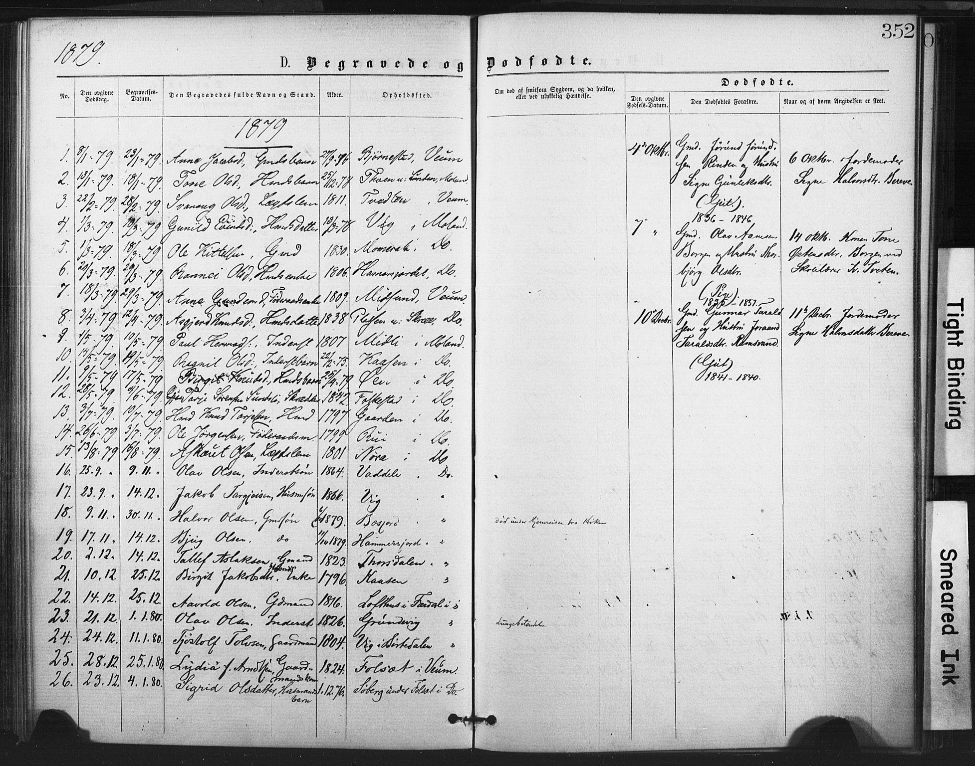 SAKO, Fyresdal kirkebøker, F/Fa/L0006: Ministerialbok nr. I 6, 1872-1886, s. 352