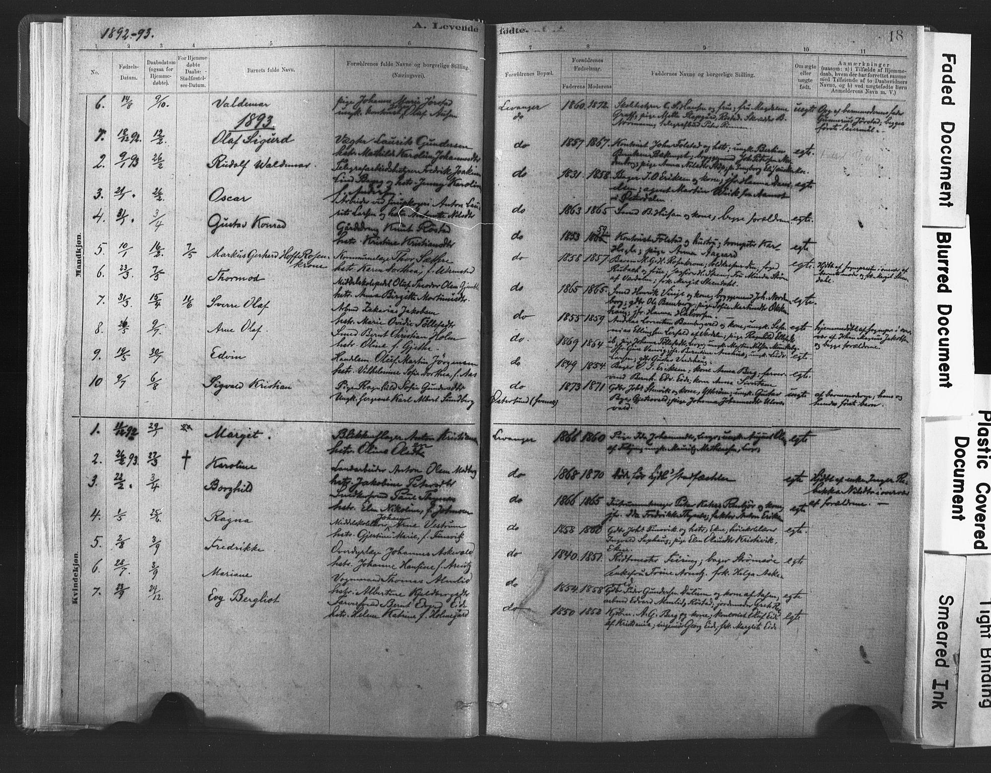 SAT, Ministerialprotokoller, klokkerbøker og fødselsregistre - Nord-Trøndelag, 720/L0189: Ministerialbok nr. 720A05, 1880-1911, s. 18