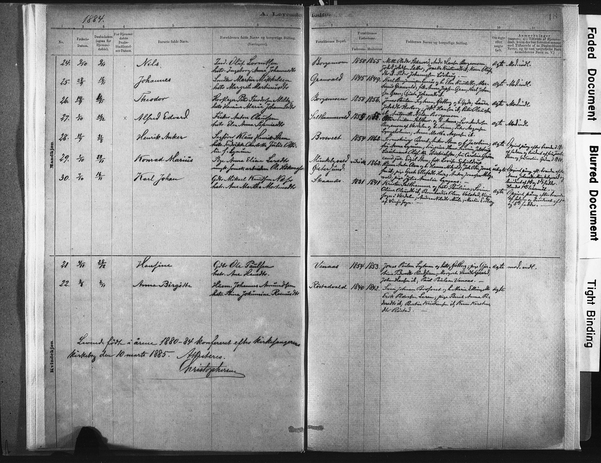SAT, Ministerialprotokoller, klokkerbøker og fødselsregistre - Nord-Trøndelag, 721/L0207: Ministerialbok nr. 721A02, 1880-1911, s. 18