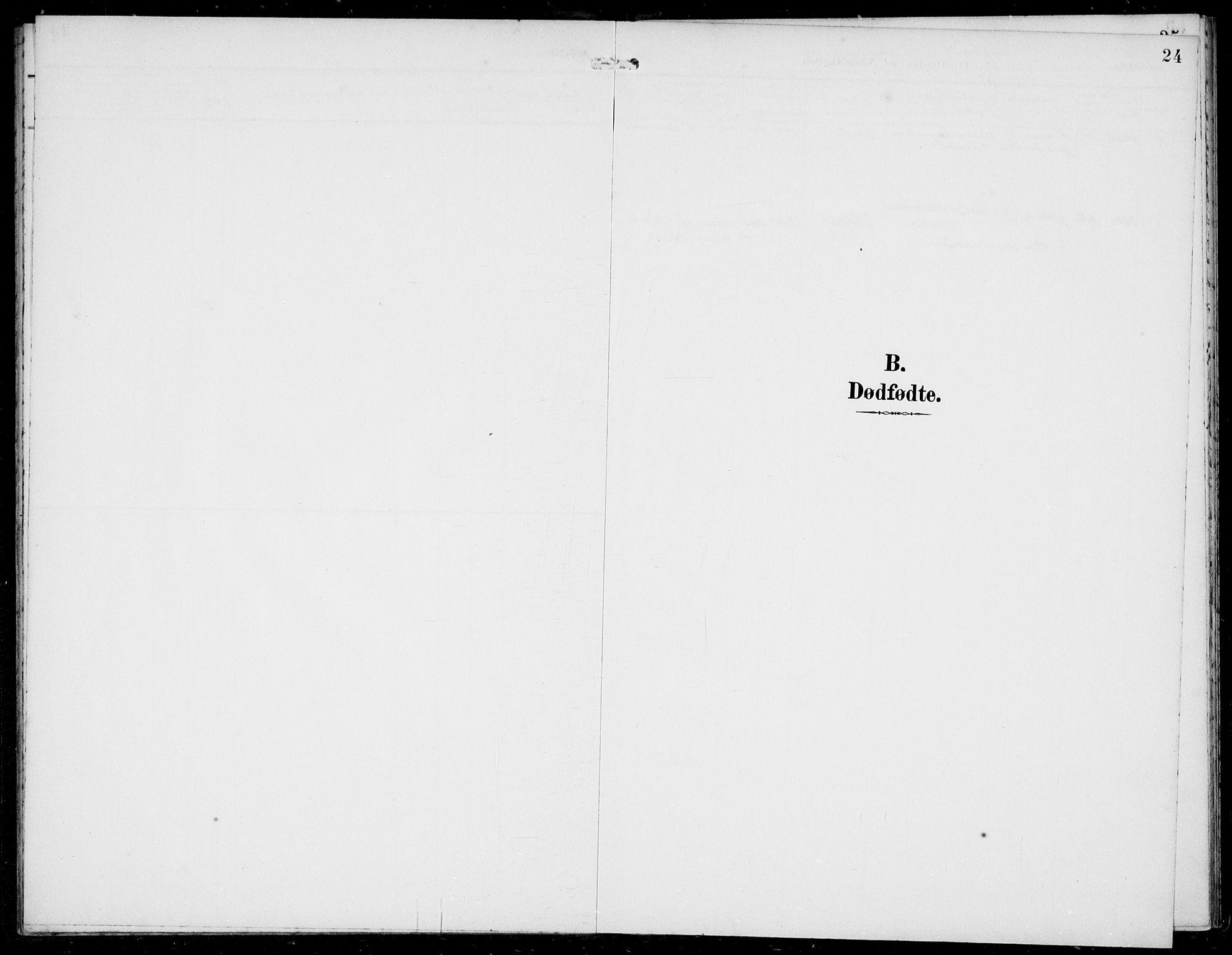 SAB, Solund sokneprestembete, Ministerialbok nr. B  1, 1891-1901, s. 24