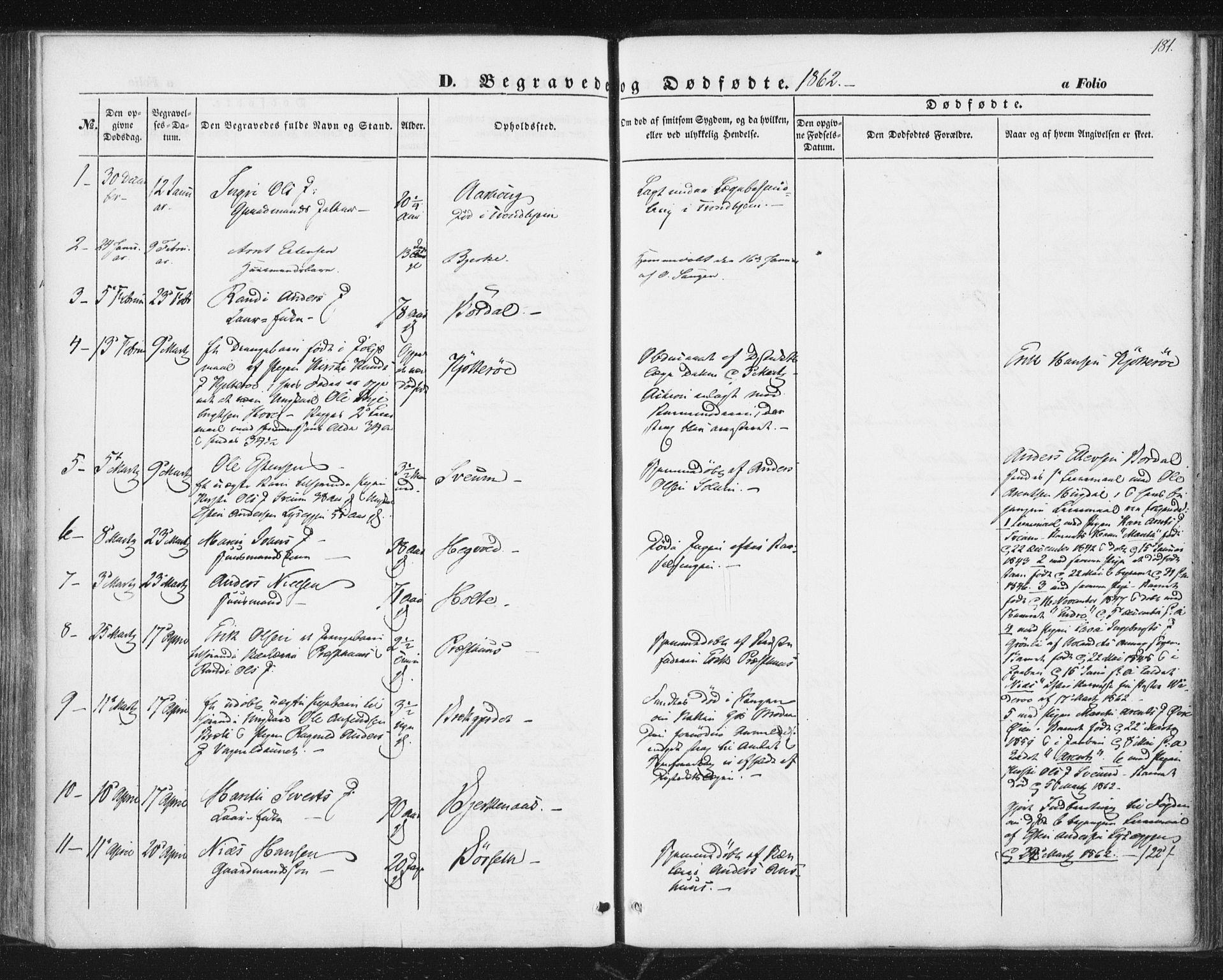 SAT, Ministerialprotokoller, klokkerbøker og fødselsregistre - Sør-Trøndelag, 689/L1038: Ministerialbok nr. 689A03, 1848-1872, s. 181