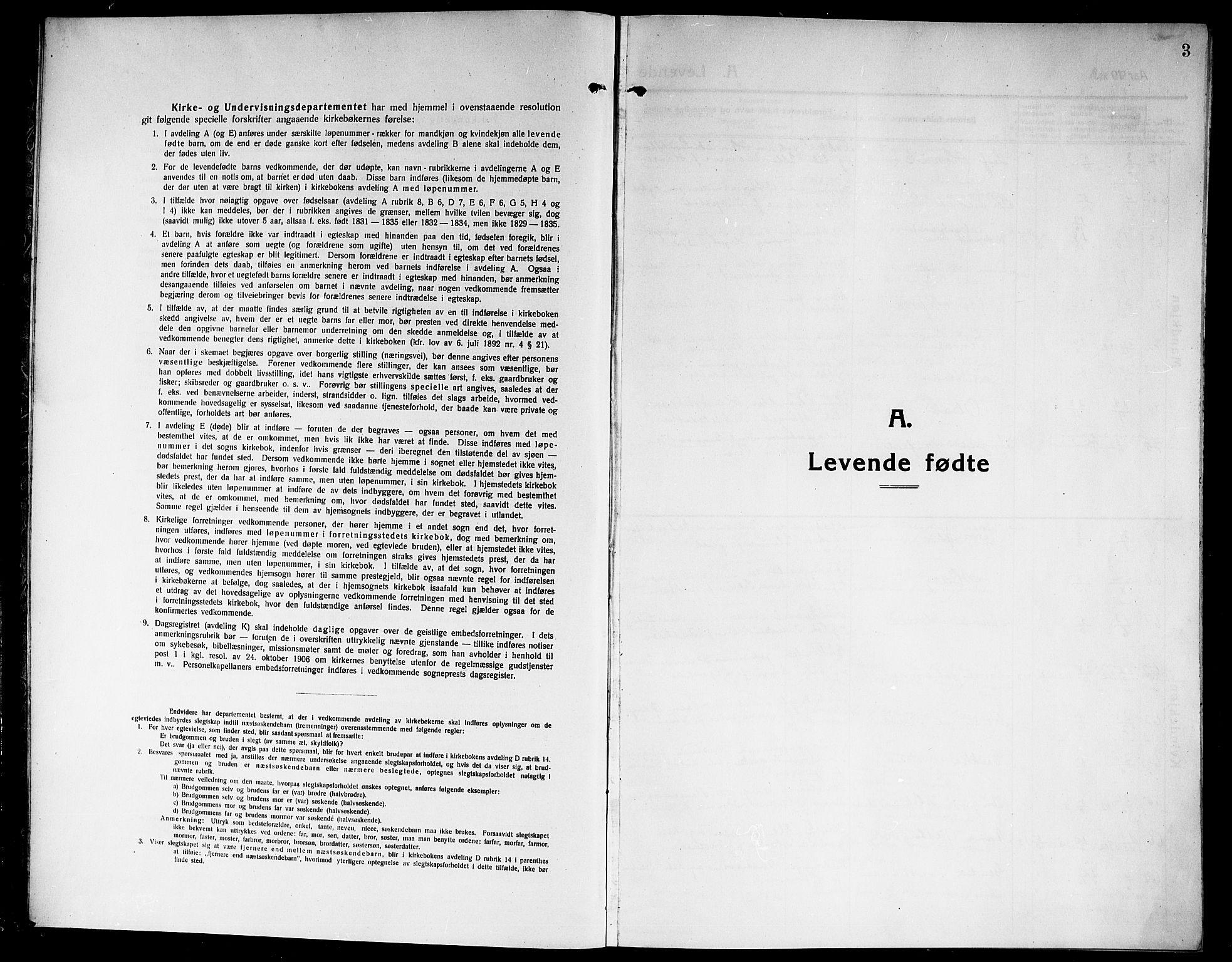 SAKO, Rjukan kirkebøker, G/Ga/L0002: Klokkerbok nr. 2, 1913-1920, s. 3