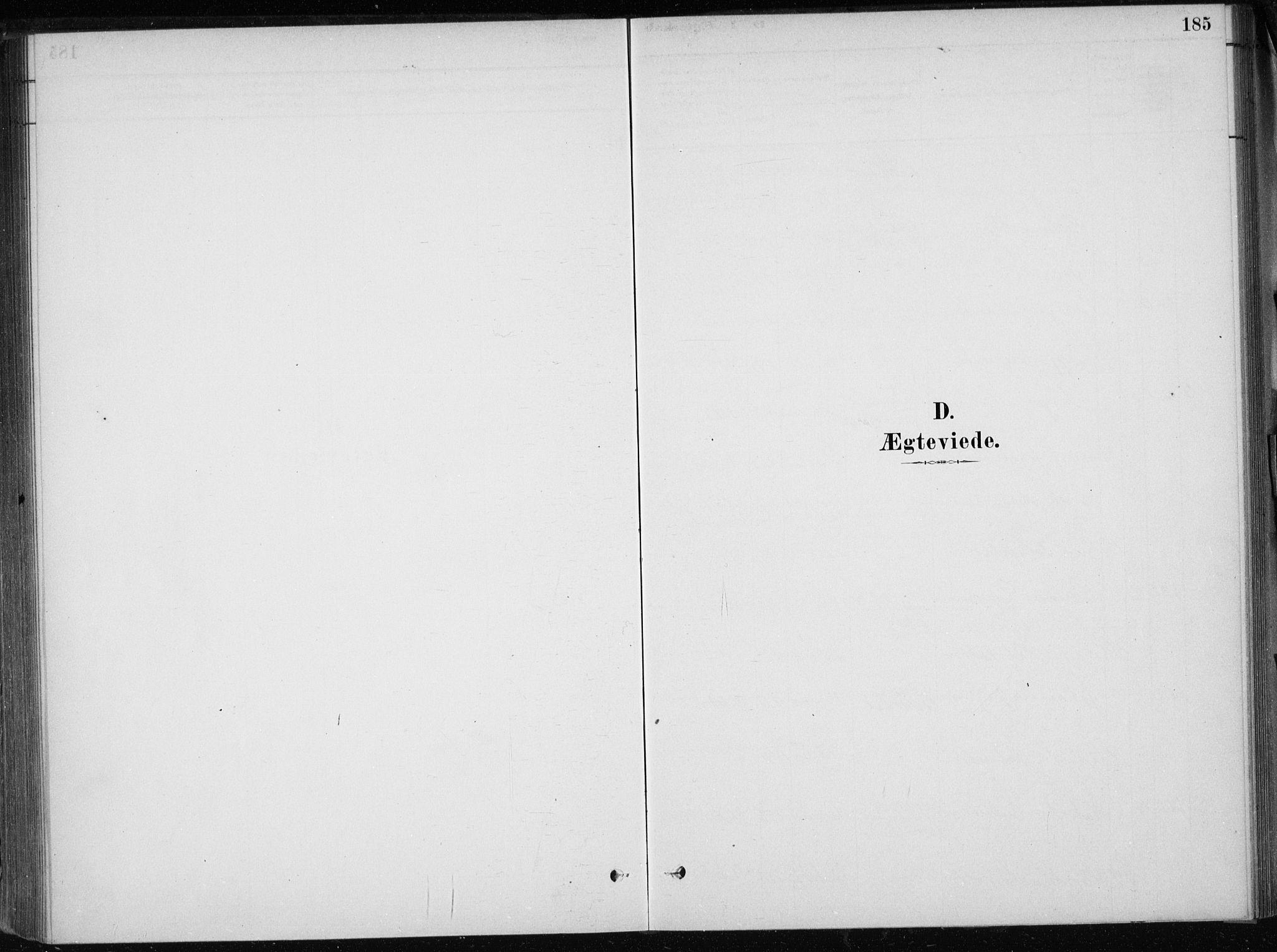 SAB, Skånevik Sokneprestembete, H/Haa: Ministerialbok nr. E  1, 1879-1901, s. 185