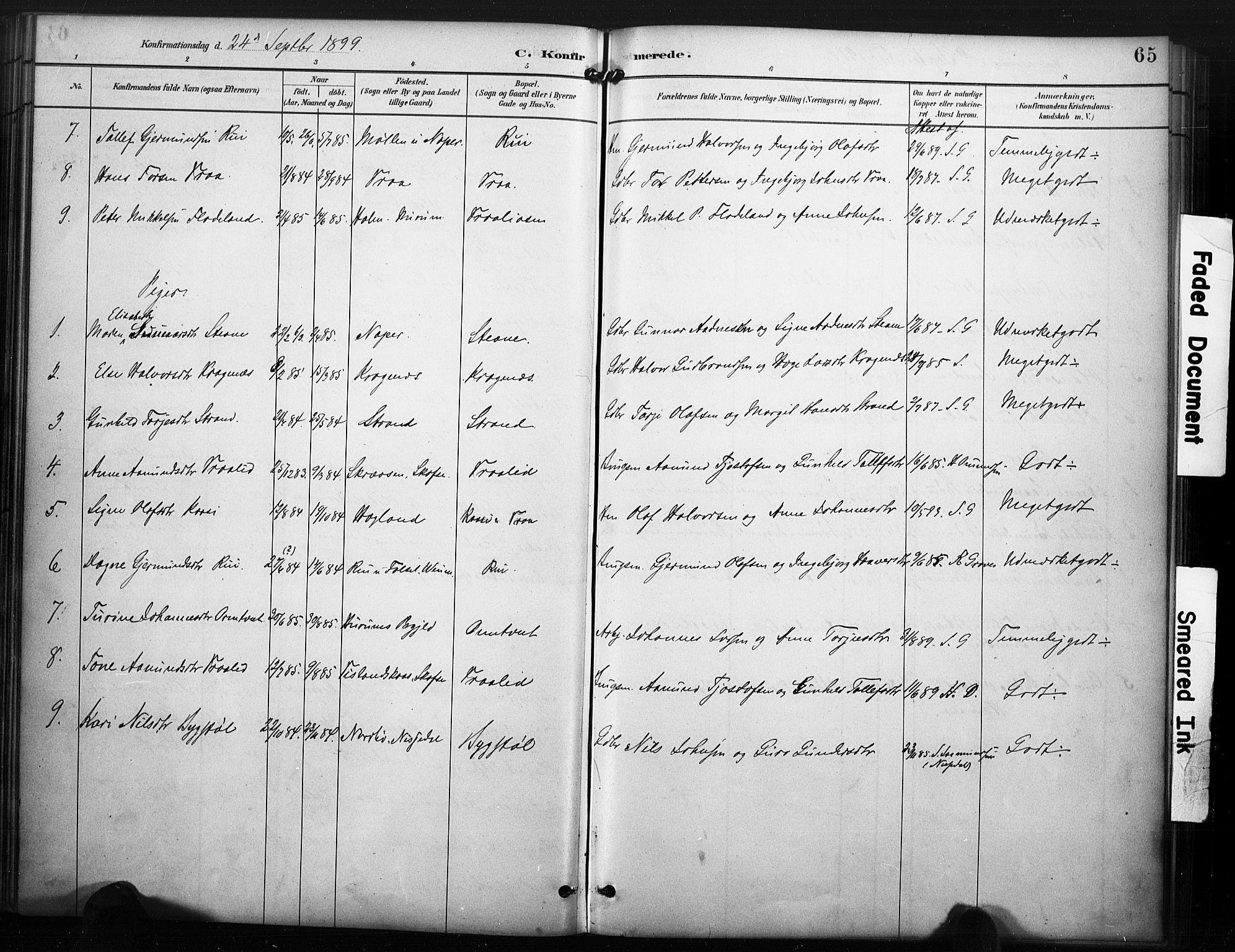 SAKO, Kviteseid kirkebøker, F/Fc/L0002: Ministerialbok nr. III 2, 1882-1908, s. 65