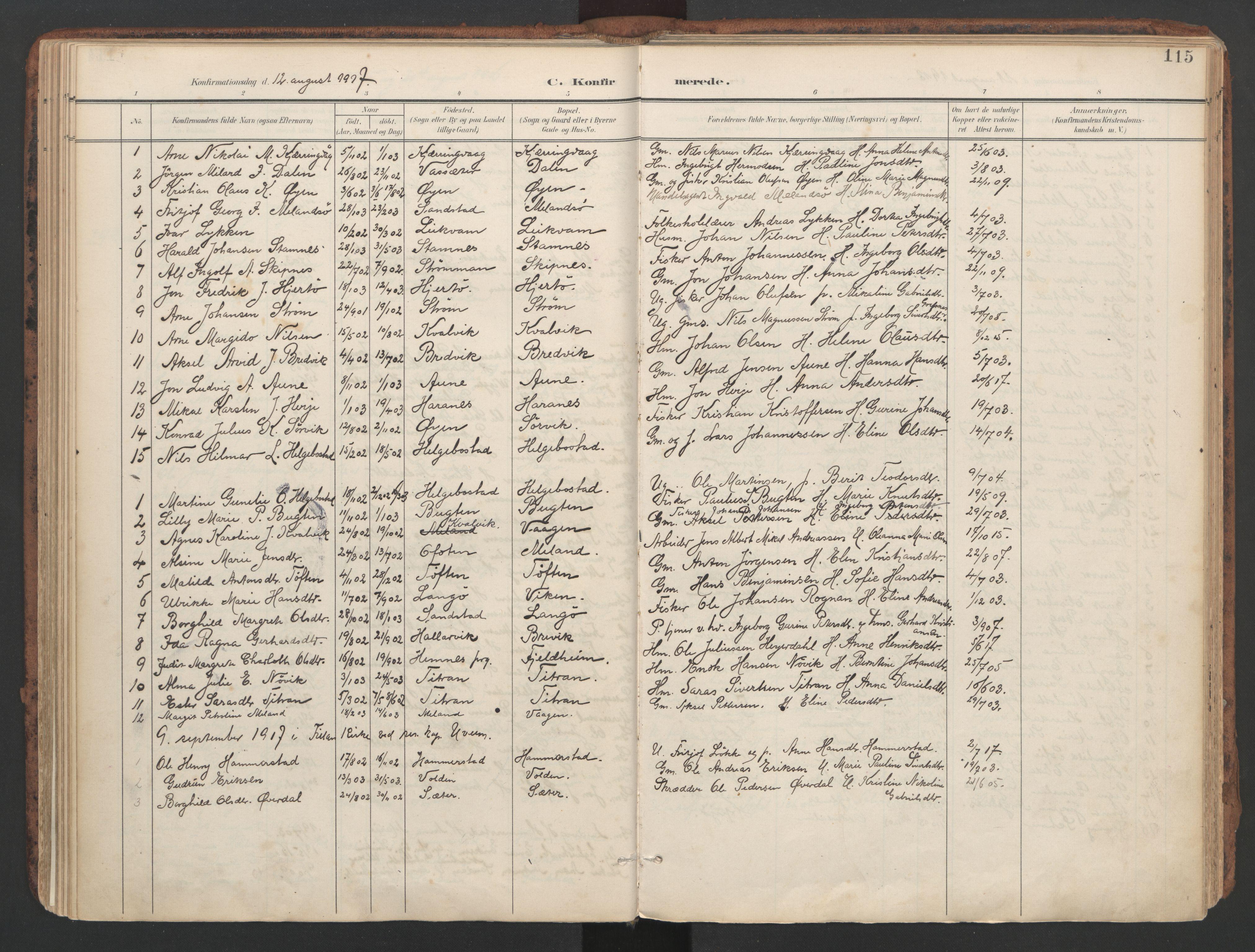 SAT, Ministerialprotokoller, klokkerbøker og fødselsregistre - Sør-Trøndelag, 634/L0537: Ministerialbok nr. 634A13, 1896-1922, s. 115