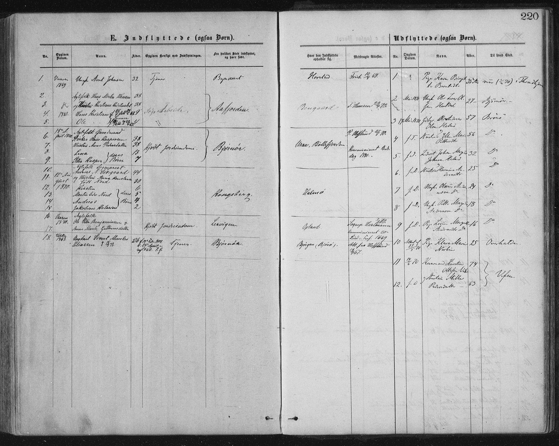 SAT, Ministerialprotokoller, klokkerbøker og fødselsregistre - Nord-Trøndelag, 771/L0596: Ministerialbok nr. 771A03, 1870-1884, s. 220