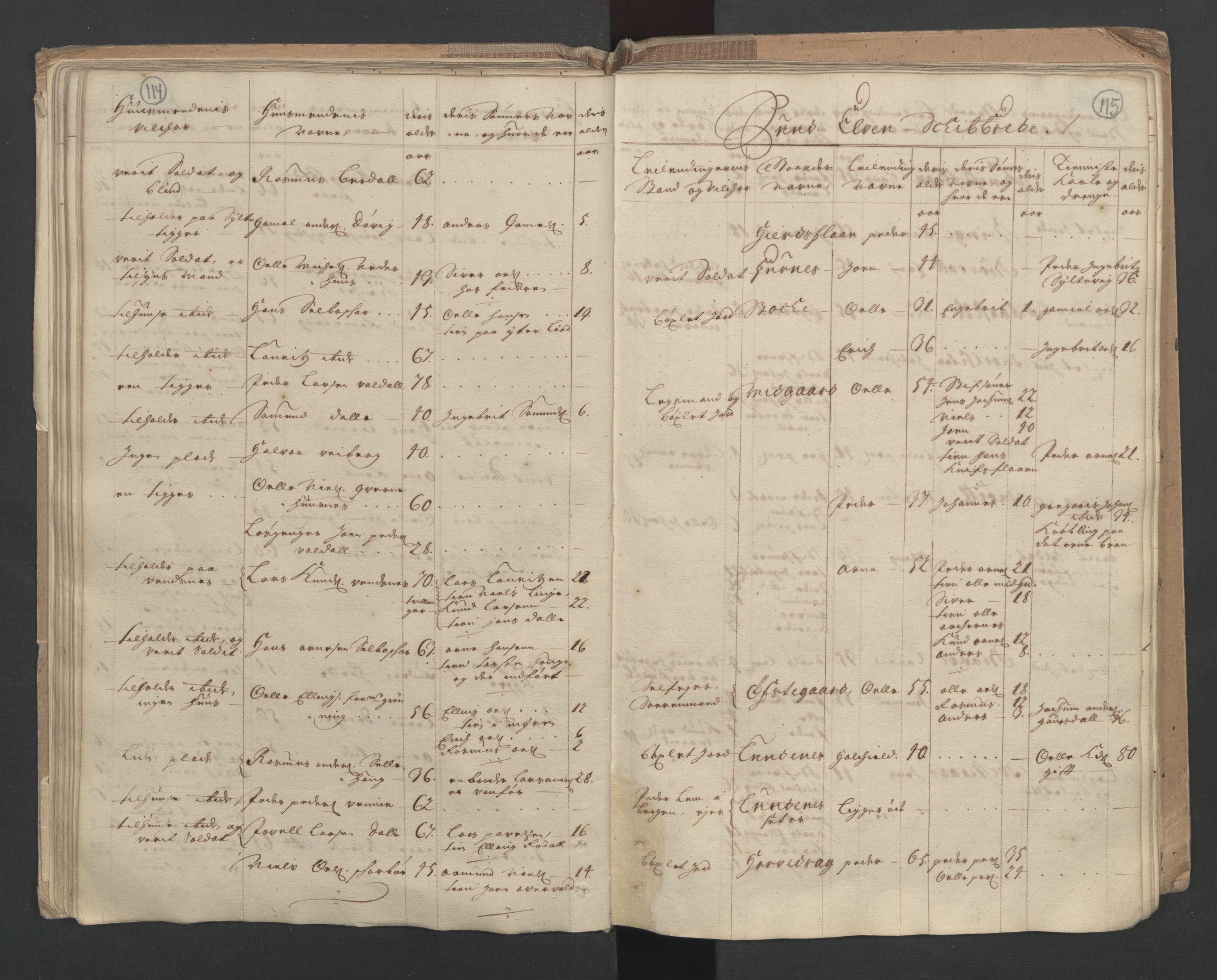 RA, Manntallet 1701, nr. 10: Sunnmøre fogderi, 1701, s. 114-115