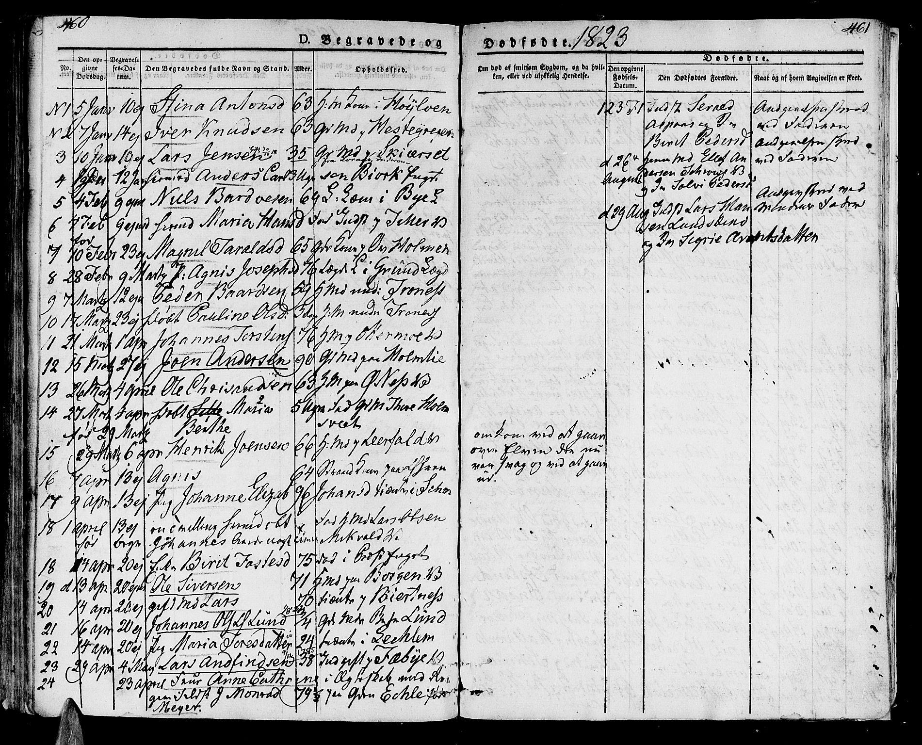 SAT, Ministerialprotokoller, klokkerbøker og fødselsregistre - Nord-Trøndelag, 723/L0237: Ministerialbok nr. 723A06, 1822-1830, s. 460-461