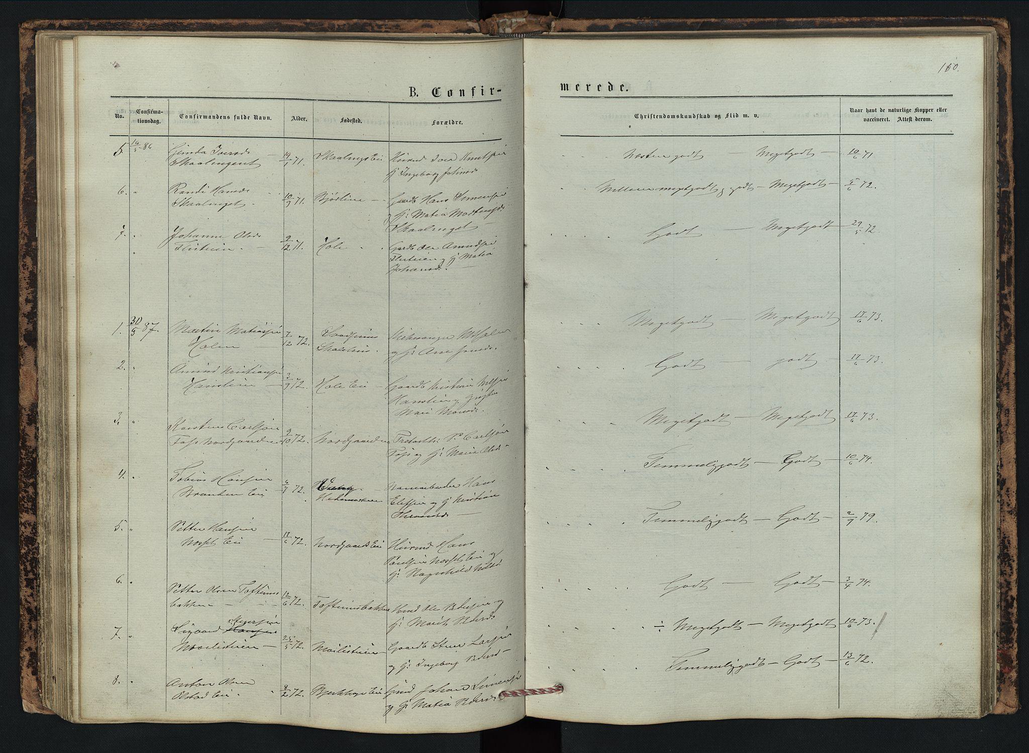 SAH, Vestre Gausdal prestekontor, Klokkerbok nr. 2, 1874-1897, s. 110