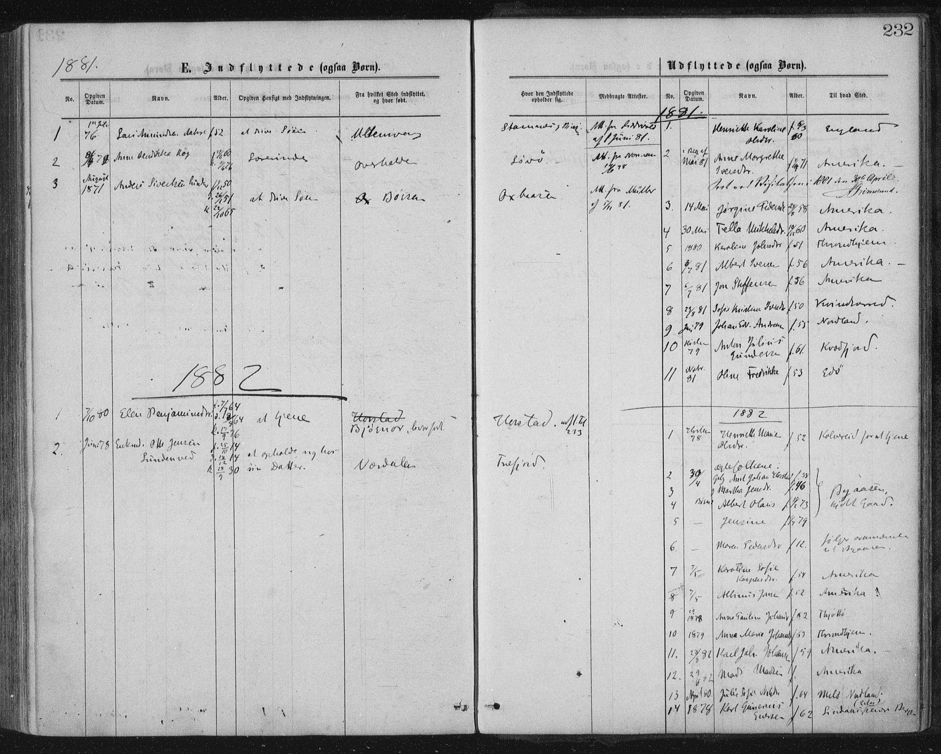 SAT, Ministerialprotokoller, klokkerbøker og fødselsregistre - Nord-Trøndelag, 771/L0596: Ministerialbok nr. 771A03, 1870-1884, s. 232