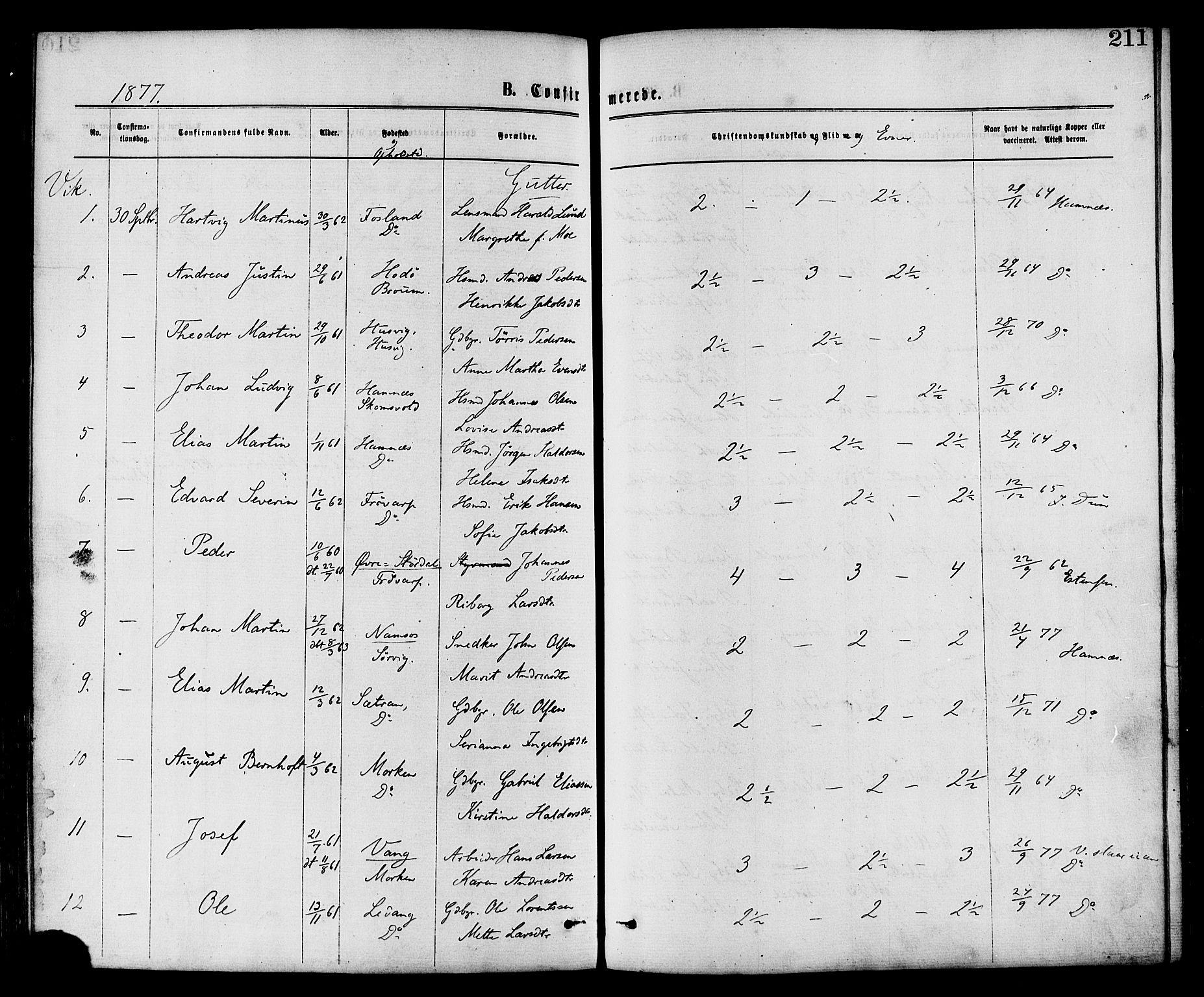 SAT, Ministerialprotokoller, klokkerbøker og fødselsregistre - Nord-Trøndelag, 773/L0616: Ministerialbok nr. 773A07, 1870-1887, s. 211