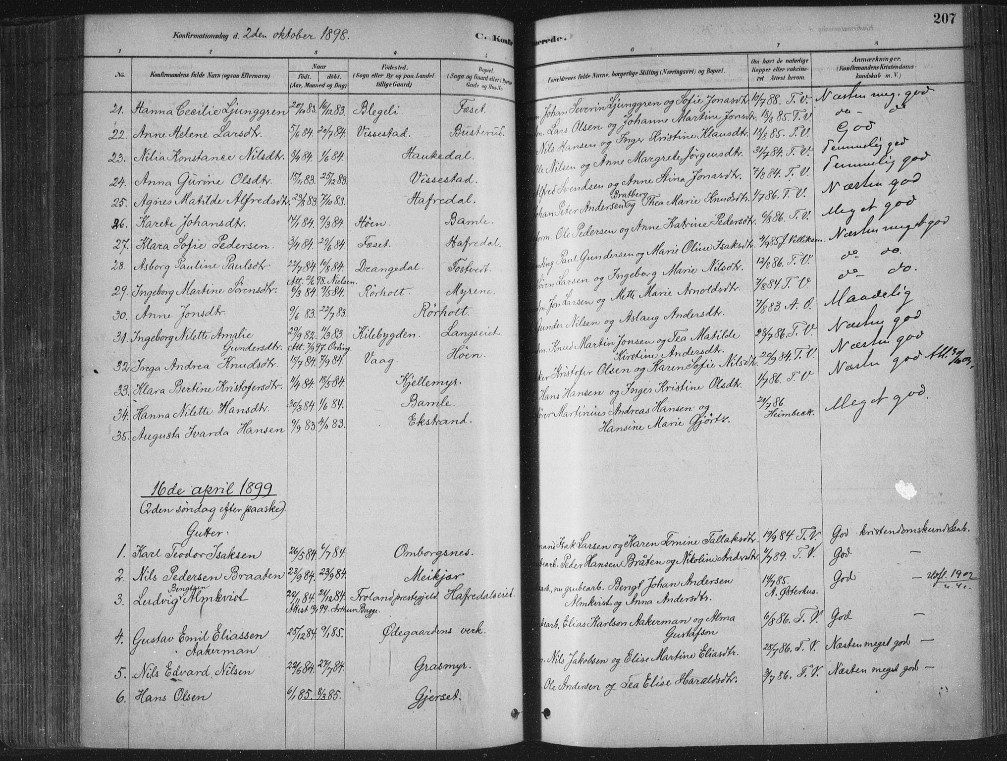 SAKO, Bamble kirkebøker, F/Fa/L0007: Ministerialbok nr. I 7, 1878-1888, s. 207