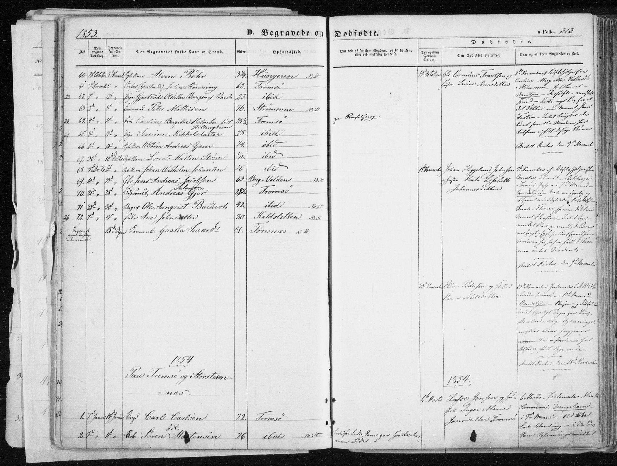 SATØ, Tromsø sokneprestkontor/stiftsprosti/domprosti, G/Ga/L0010kirke: Ministerialbok nr. 10, 1848-1855, s. 313