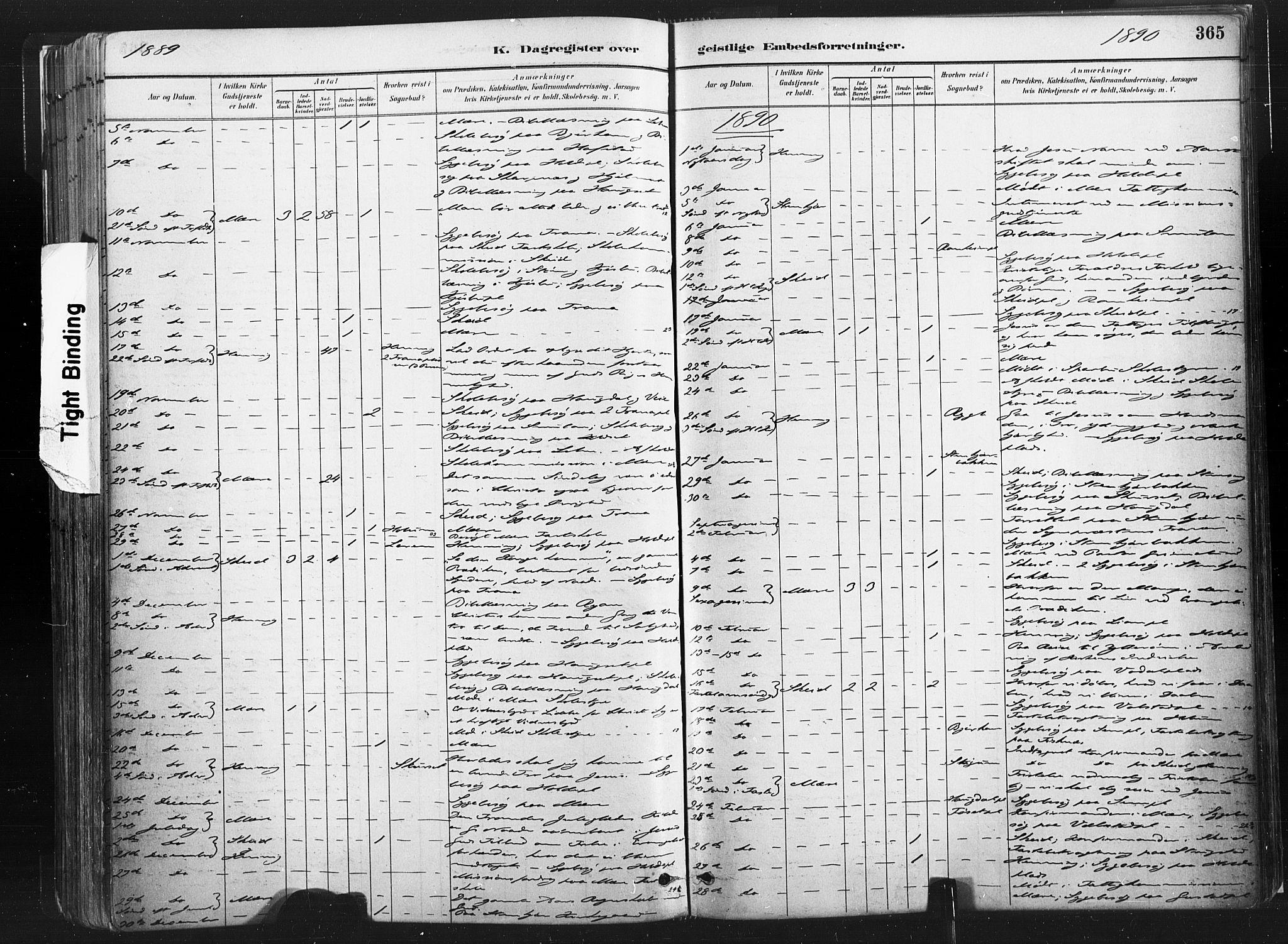 SAT, Ministerialprotokoller, klokkerbøker og fødselsregistre - Nord-Trøndelag, 735/L0351: Ministerialbok nr. 735A10, 1884-1908, s. 365