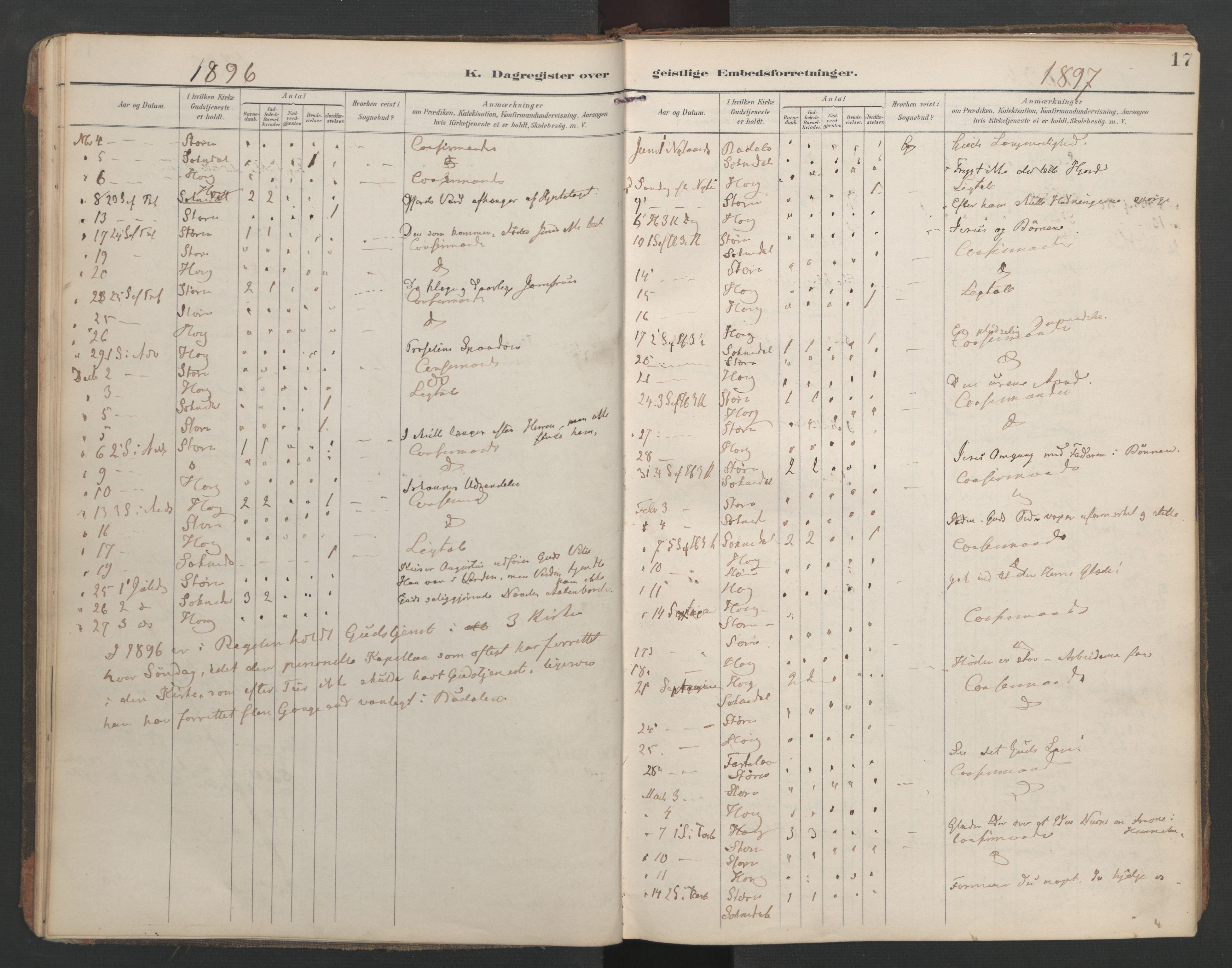SAT, Ministerialprotokoller, klokkerbøker og fødselsregistre - Sør-Trøndelag, 687/L1005: Dagregister nr. 687A11, 1891-1912, s. 17