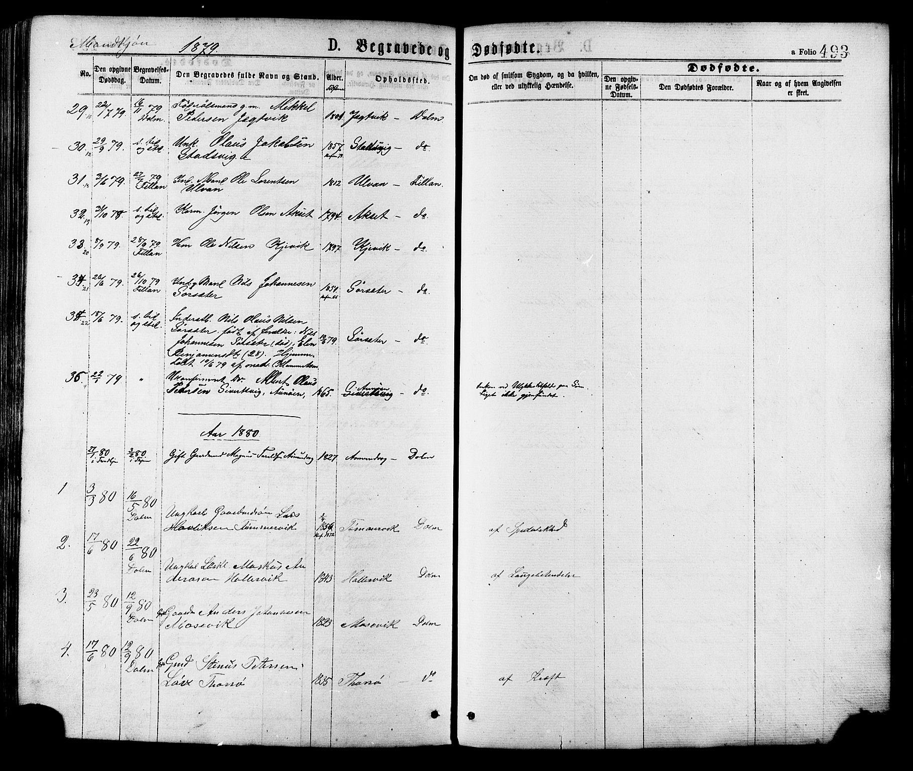 SAT, Ministerialprotokoller, klokkerbøker og fødselsregistre - Sør-Trøndelag, 634/L0532: Ministerialbok nr. 634A08, 1871-1881, s. 493