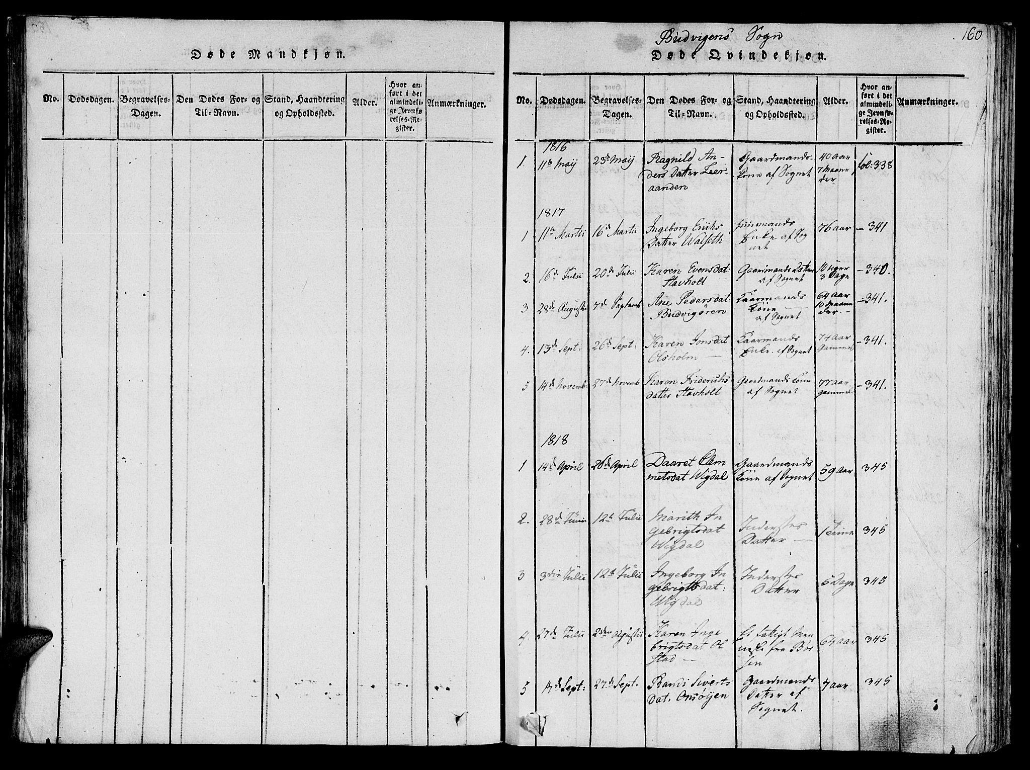 SAT, Ministerialprotokoller, klokkerbøker og fødselsregistre - Sør-Trøndelag, 612/L0373: Ministerialbok nr. 612A06 /2, 1816-1828, s. 160