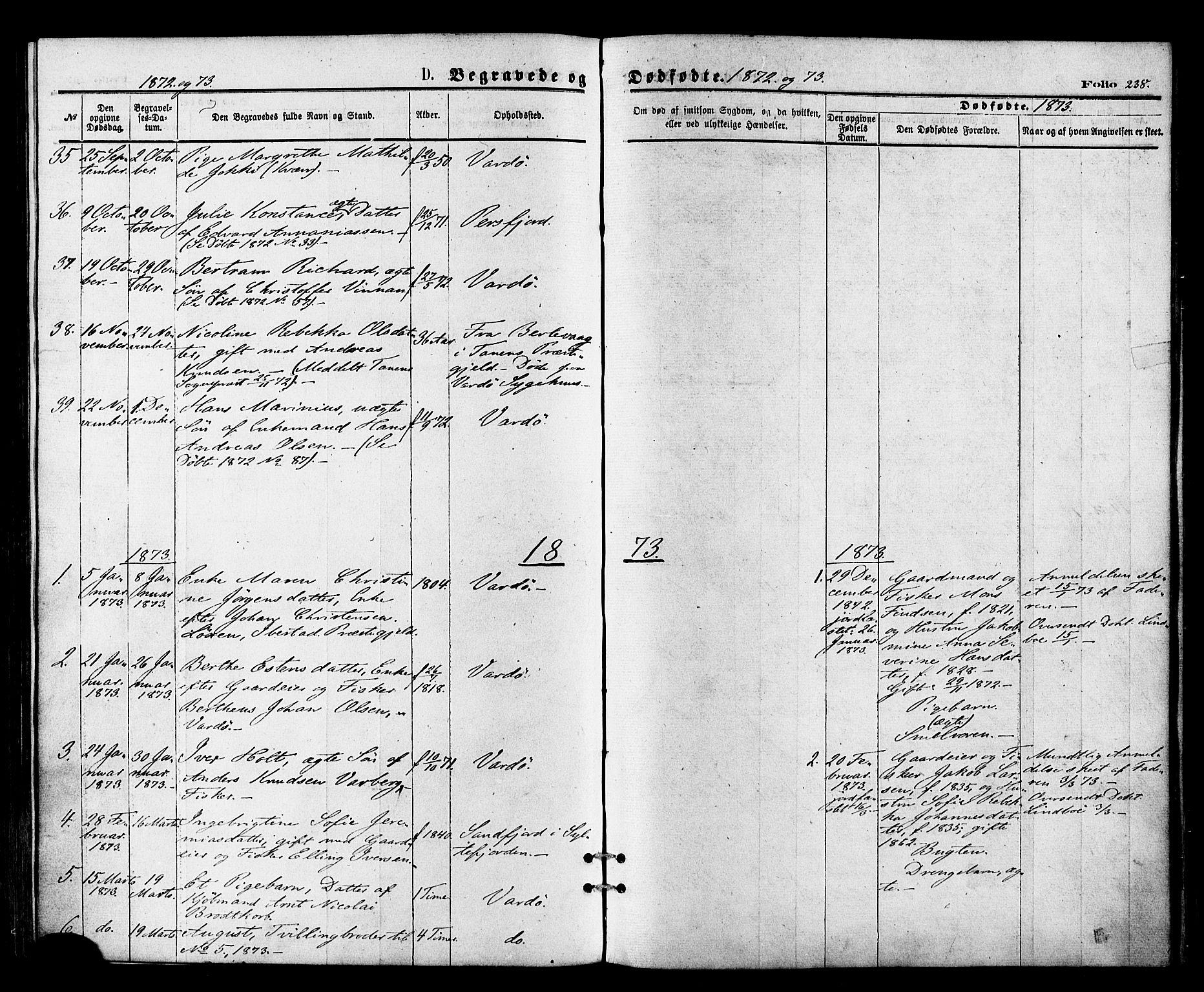 SATØ, Vardø sokneprestkontor, H/Ha/L0005kirke: Ministerialbok nr. 5, 1872-1878, s. 238