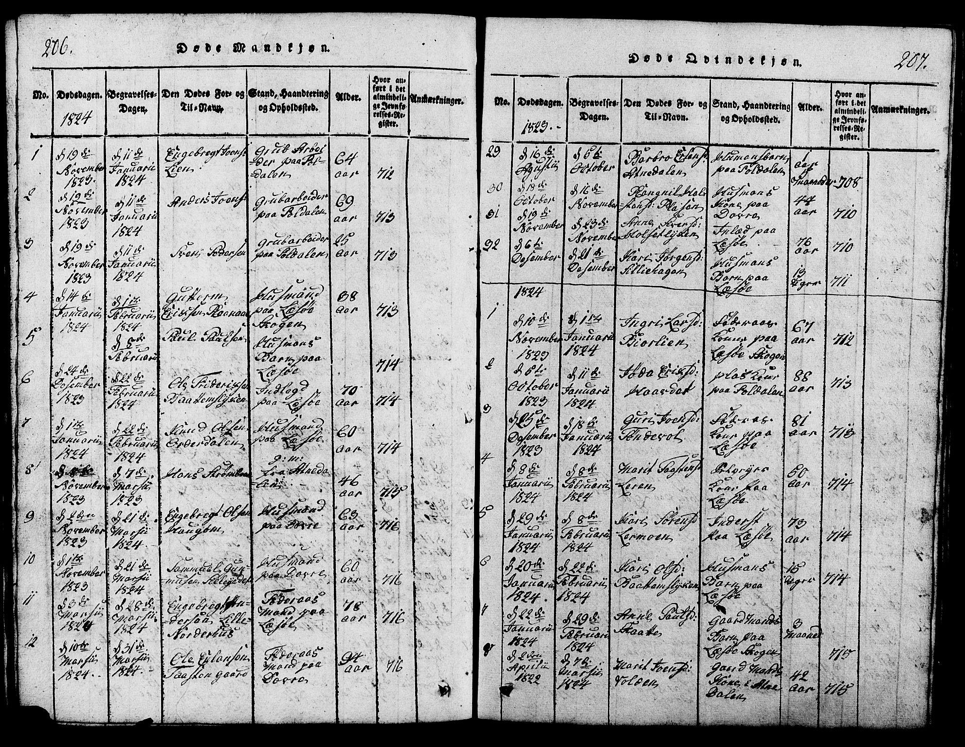 SAH, Lesja prestekontor, Klokkerbok nr. 1, 1820-1831, s. 206-207