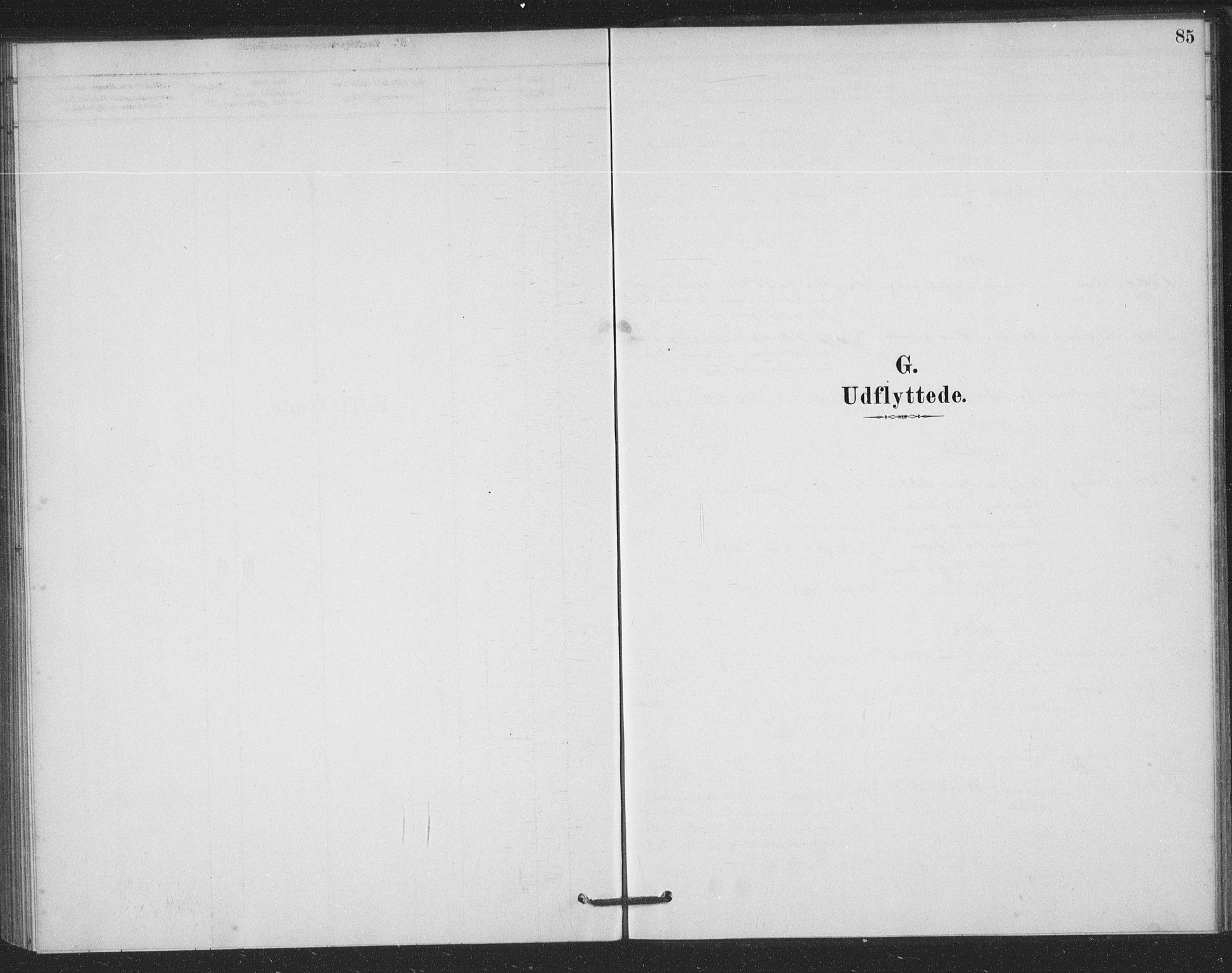 SAKO, Bamble kirkebøker, F/Fb/L0001: Ministerialbok nr. II 1, 1878-1899, s. 85